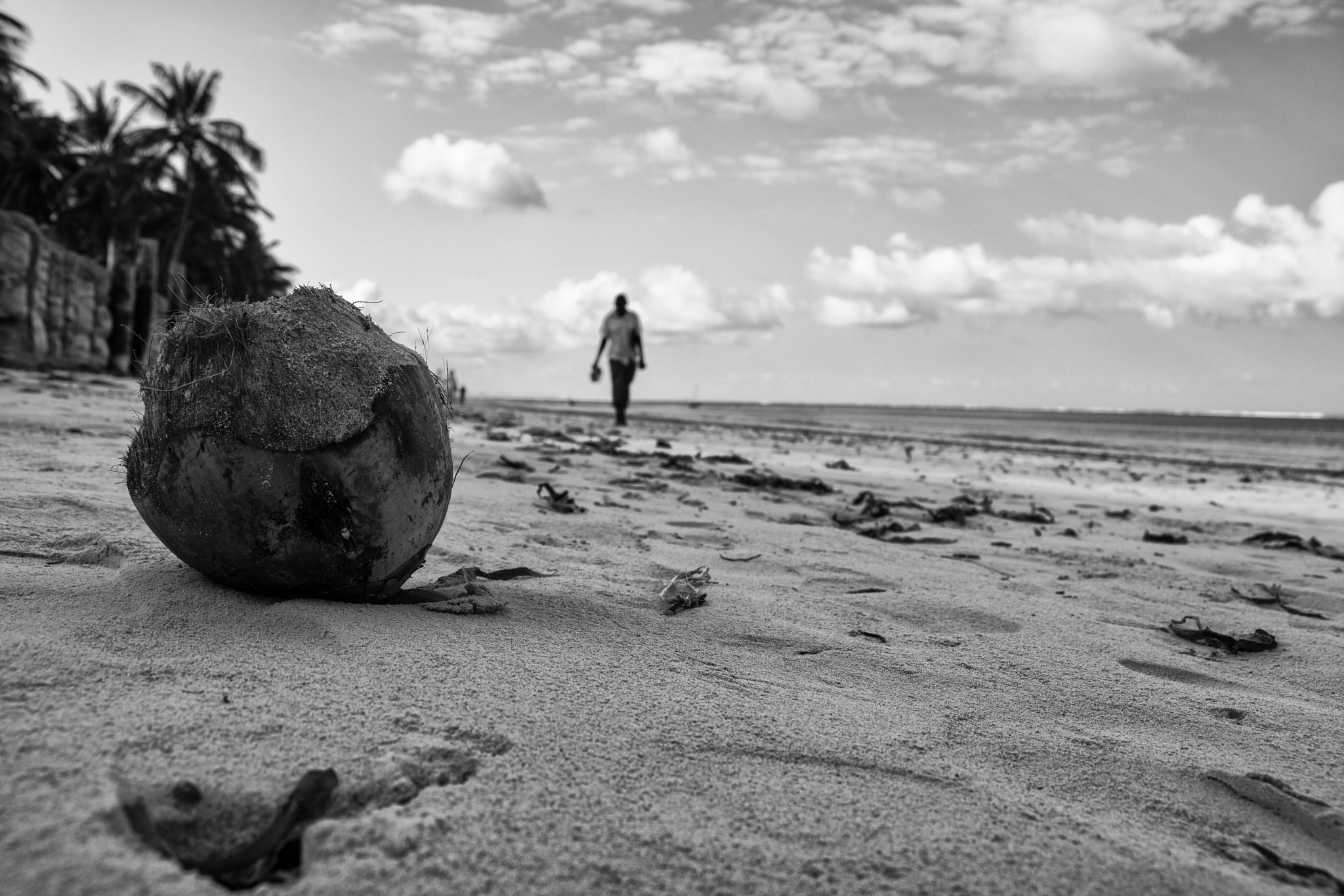 Kenyan Coconut by Arrack34