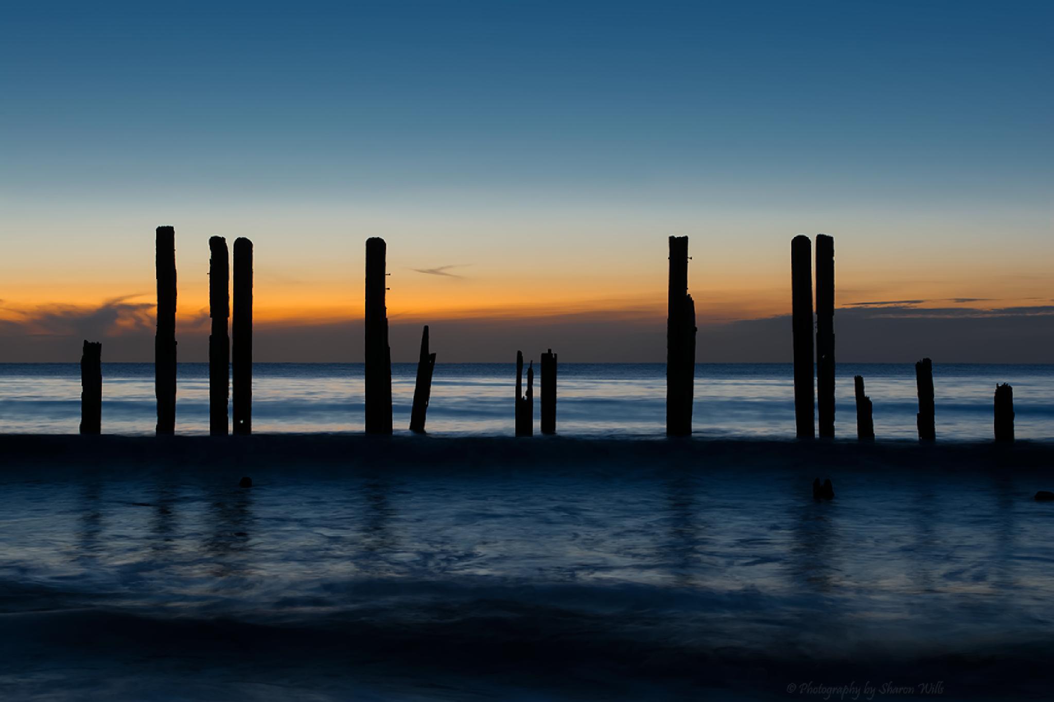 Liquid Sunsets by Sharon Wills