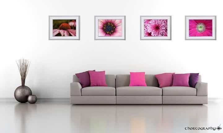 Pretty in Pink by Darryll Scott
