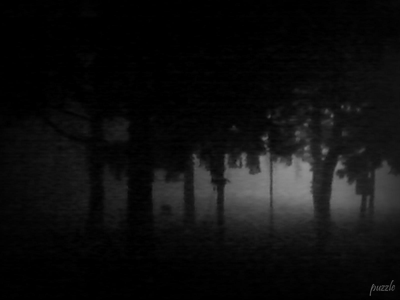 rambling... through trembling shadows... by Sasa Puzzle