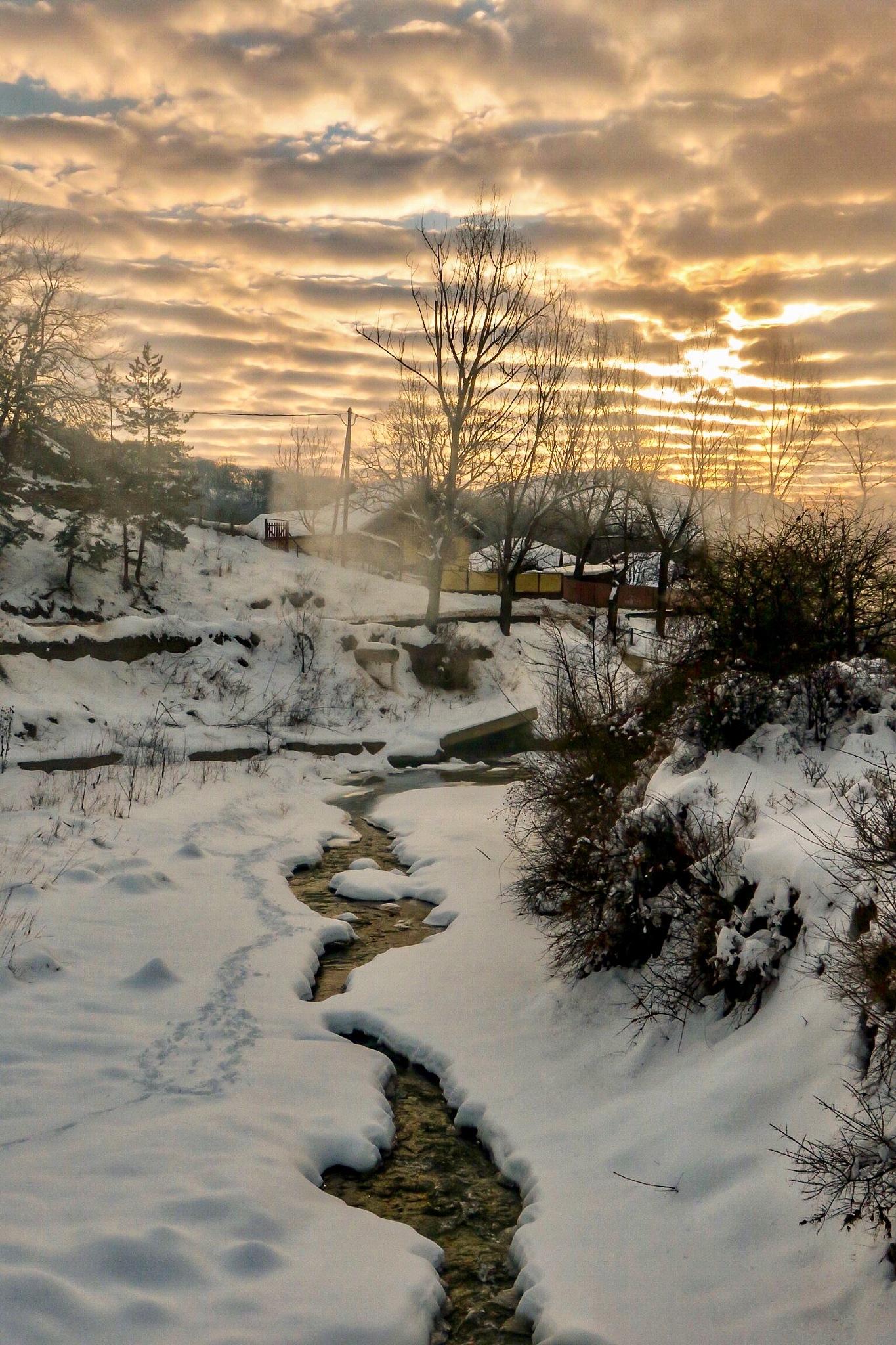 February  by Adi Gli