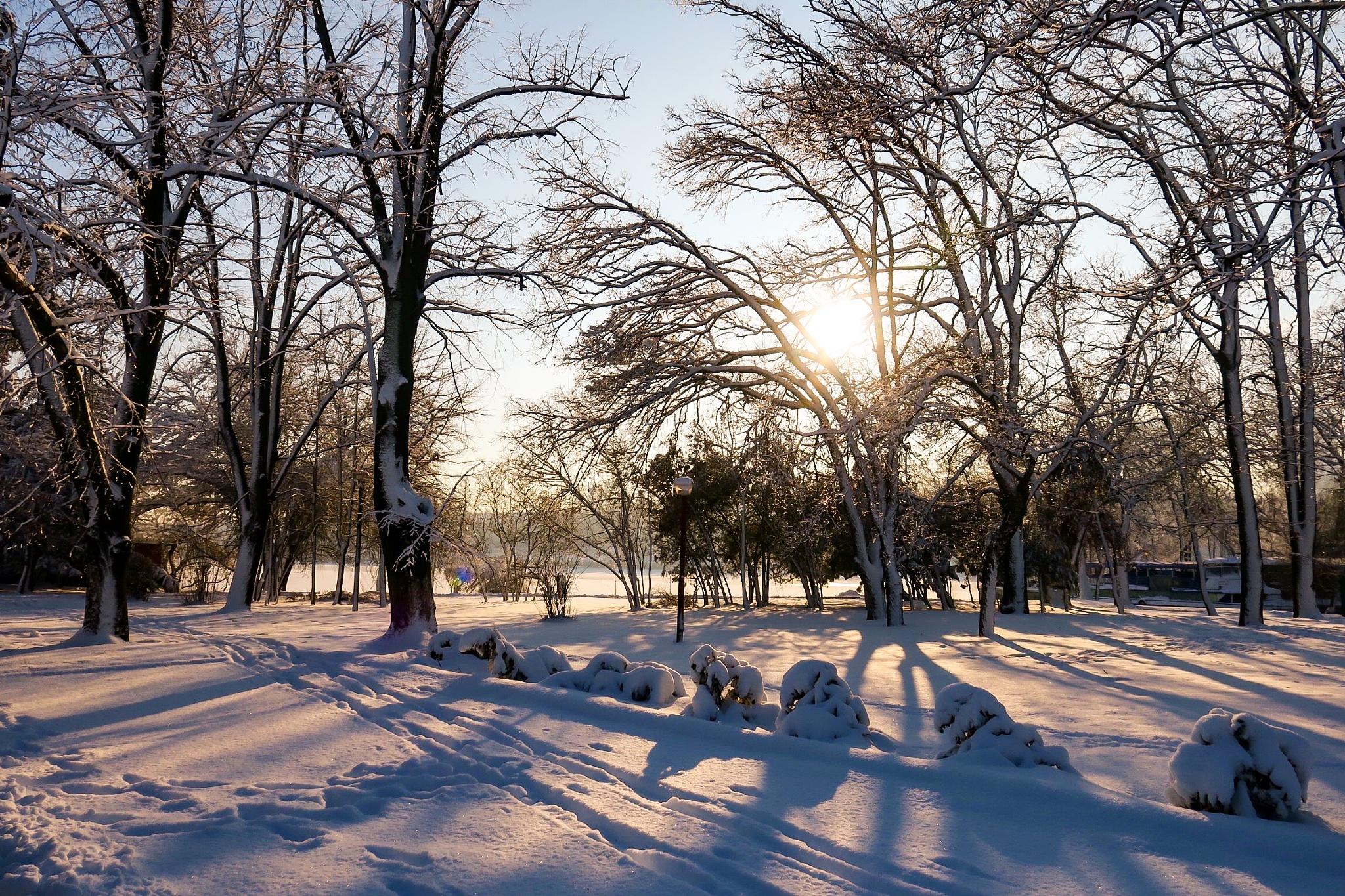 Wonderful winter day by Adi Gli