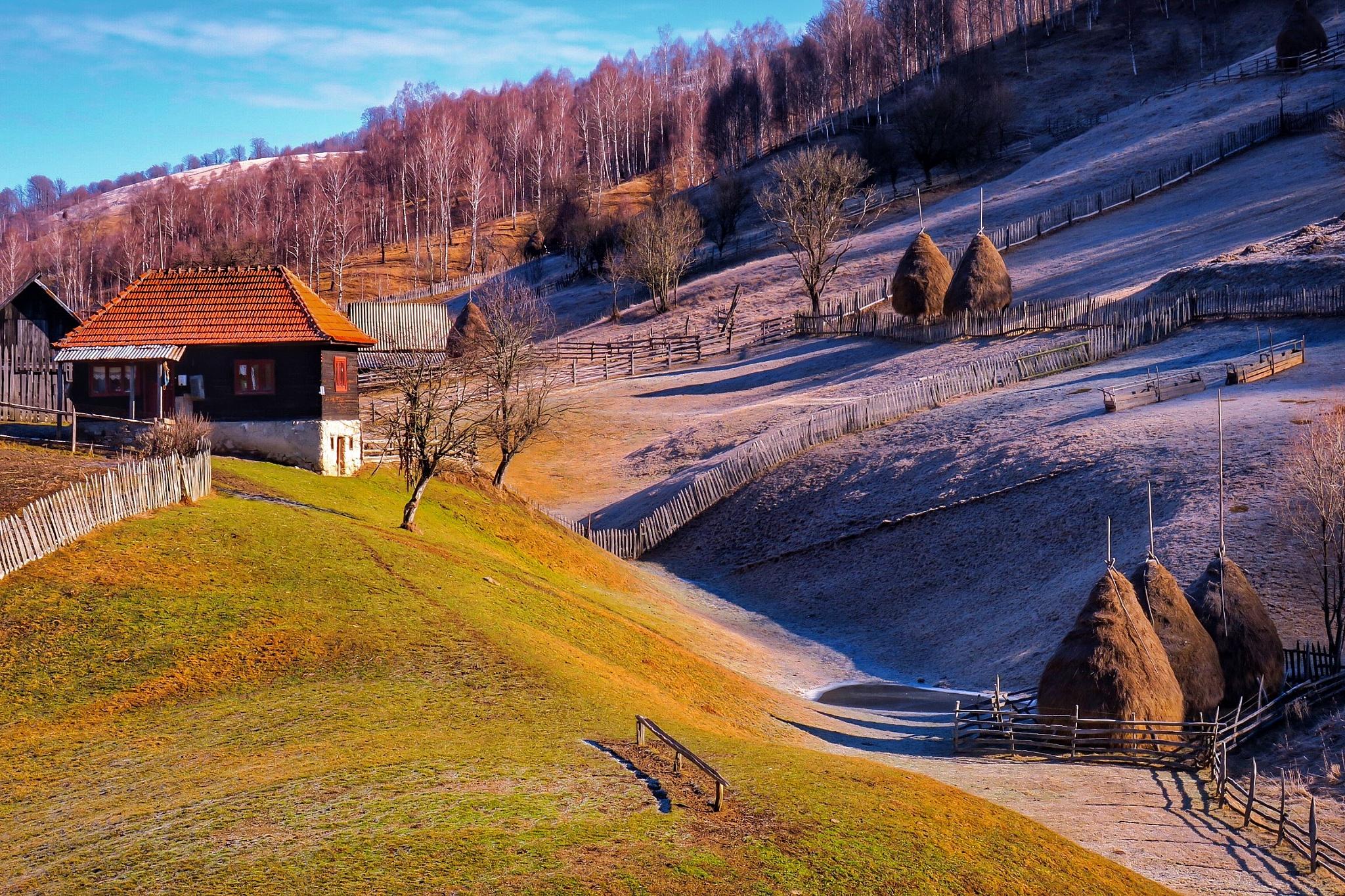 Winter&Spring in the same time! by Adi Gli