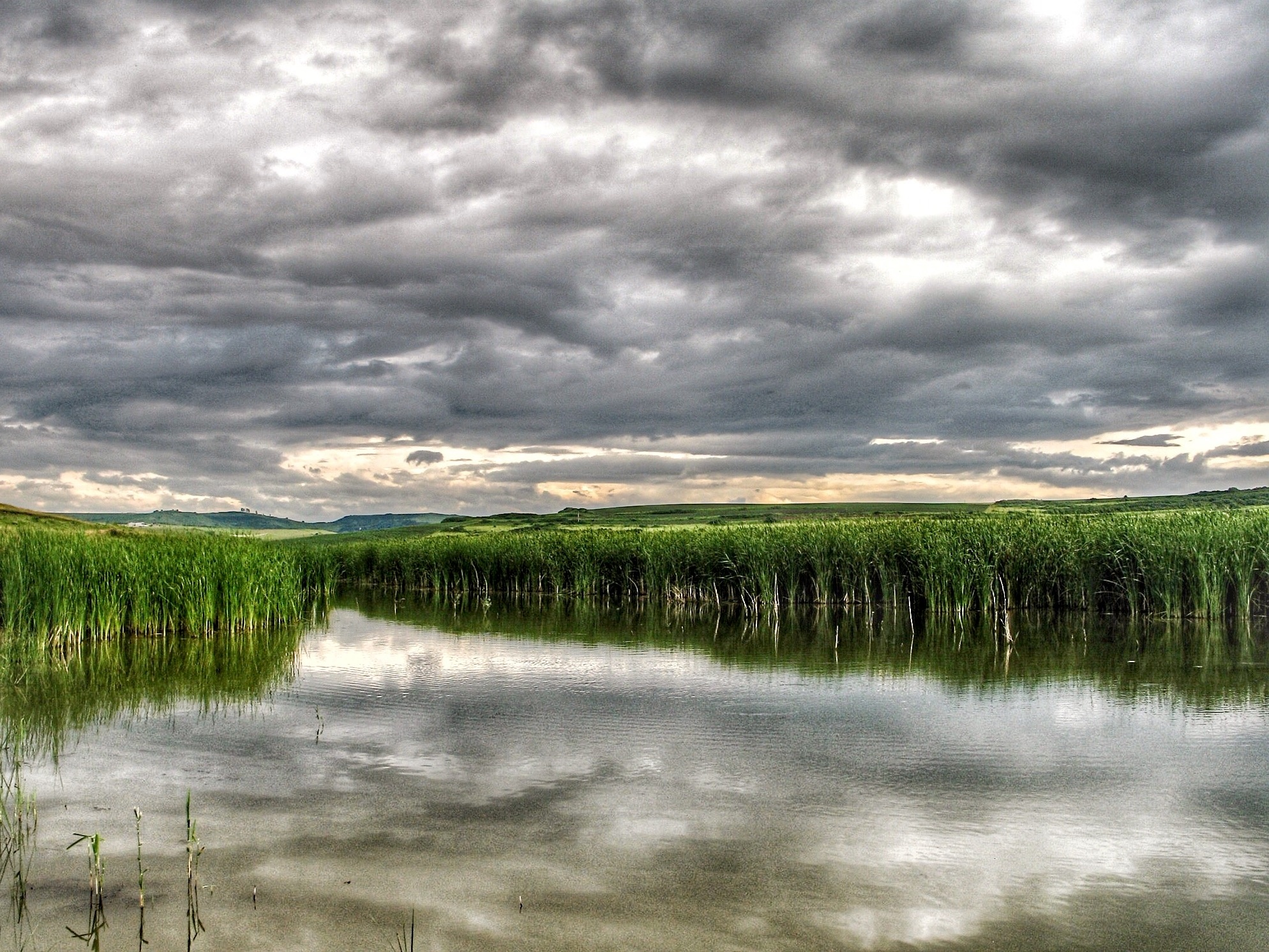 A lot of sky and some green... by Adi Gli