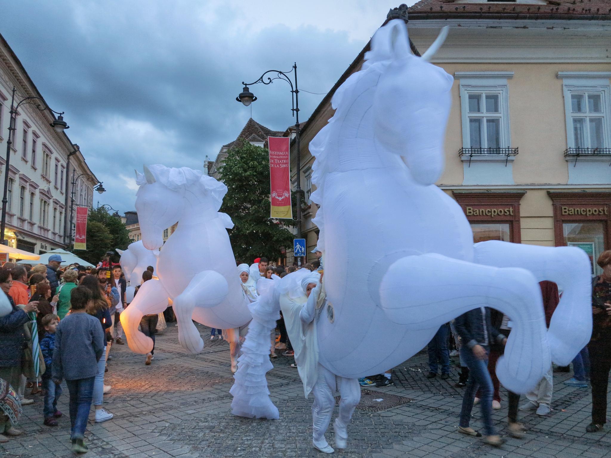 Imperial Horses Show at Sibfest II by Adi Gli