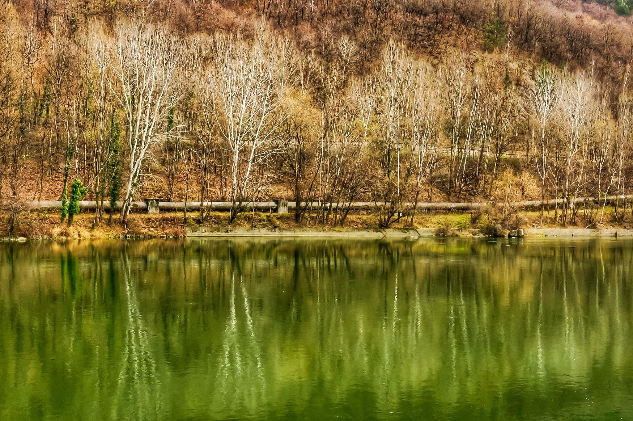 Second mirror on Olt River! by Adi Gli