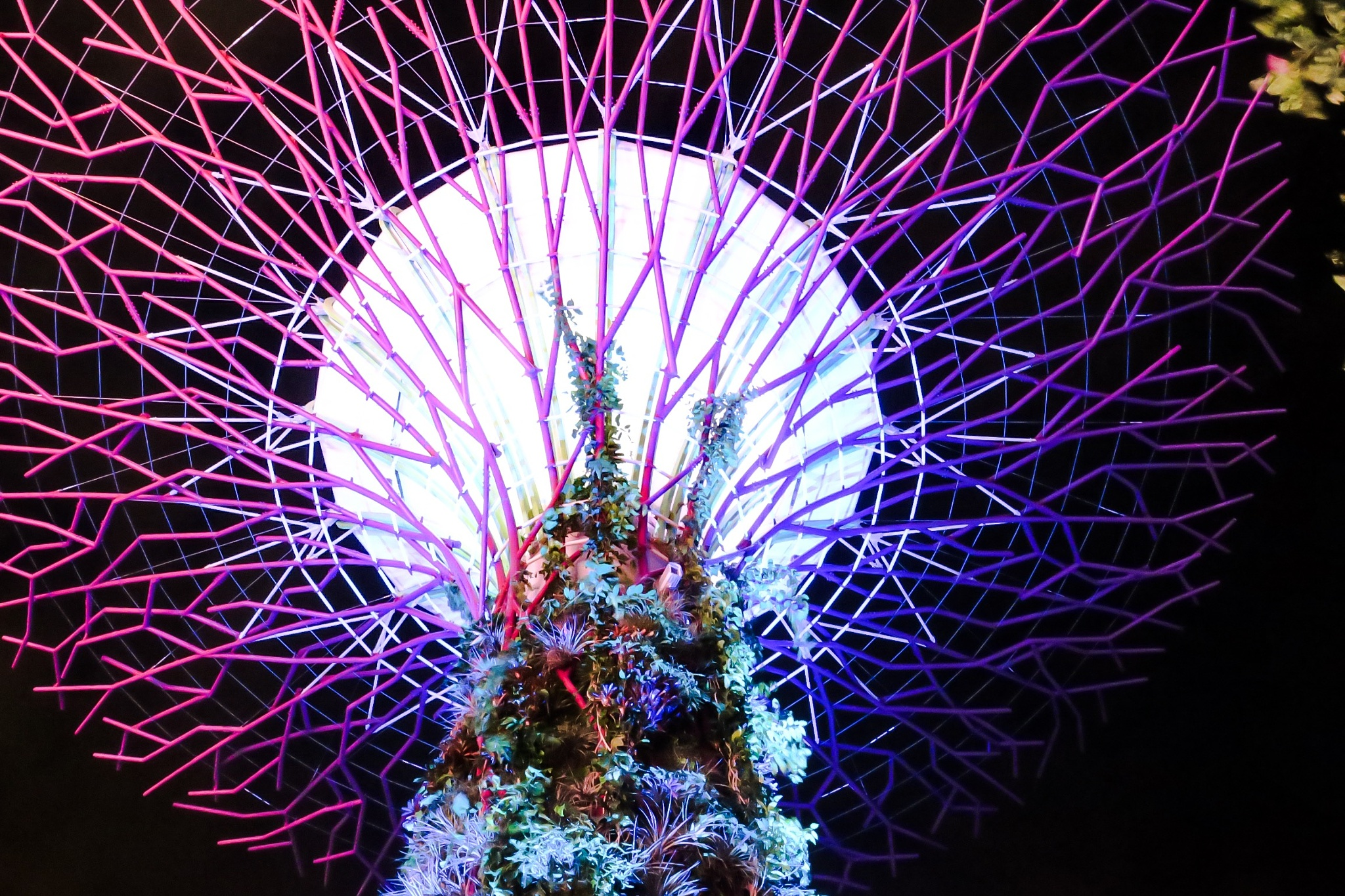 Tree from Gardens by the bay by Adi Gli