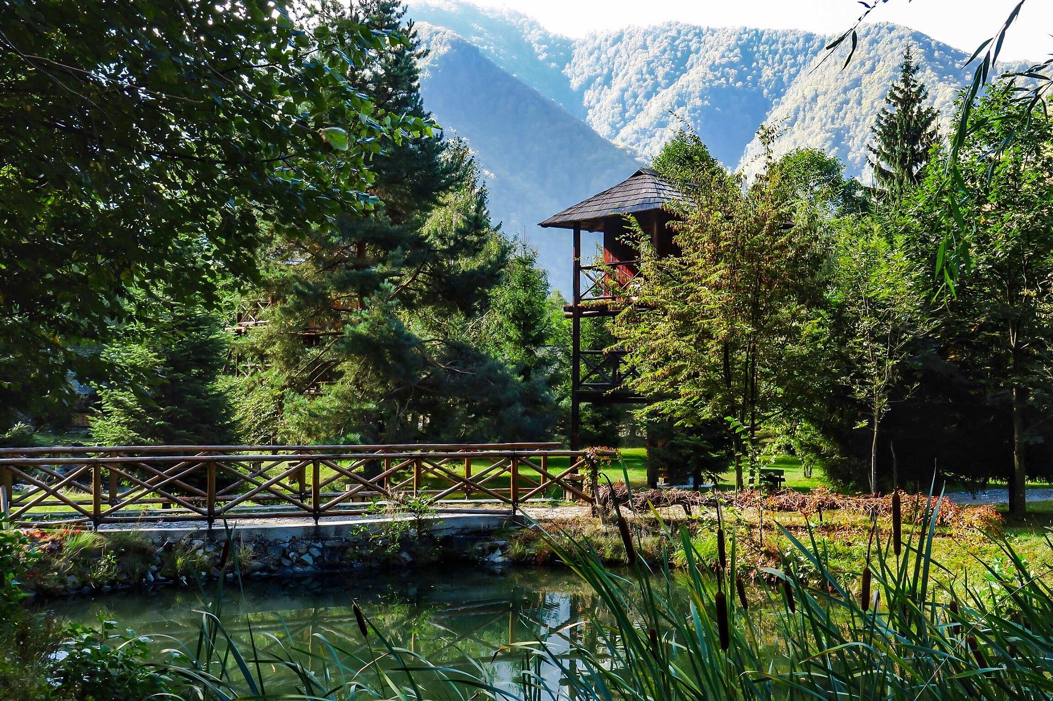 Utopia verde by Adi Gli