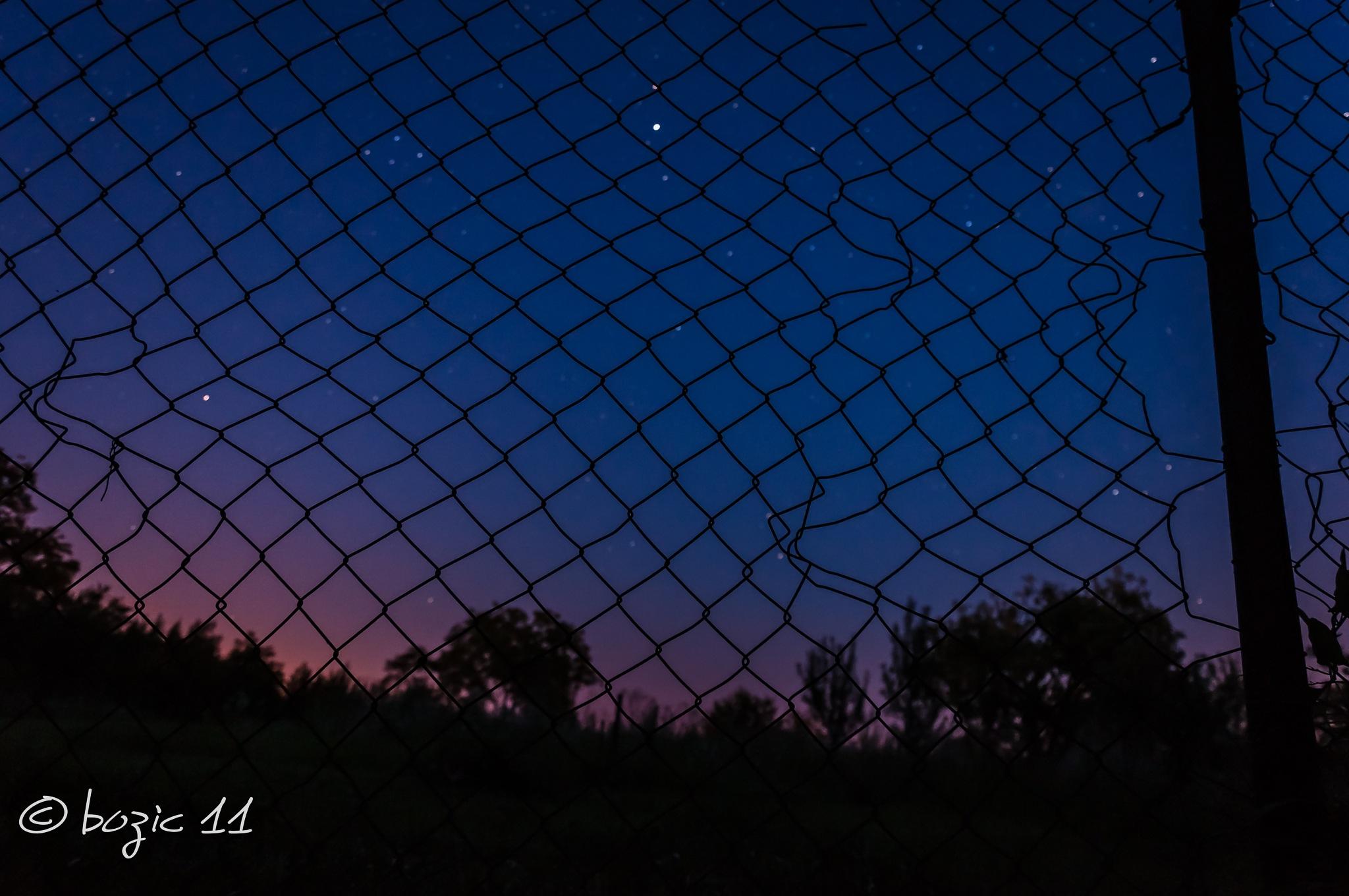 mesh by Robert