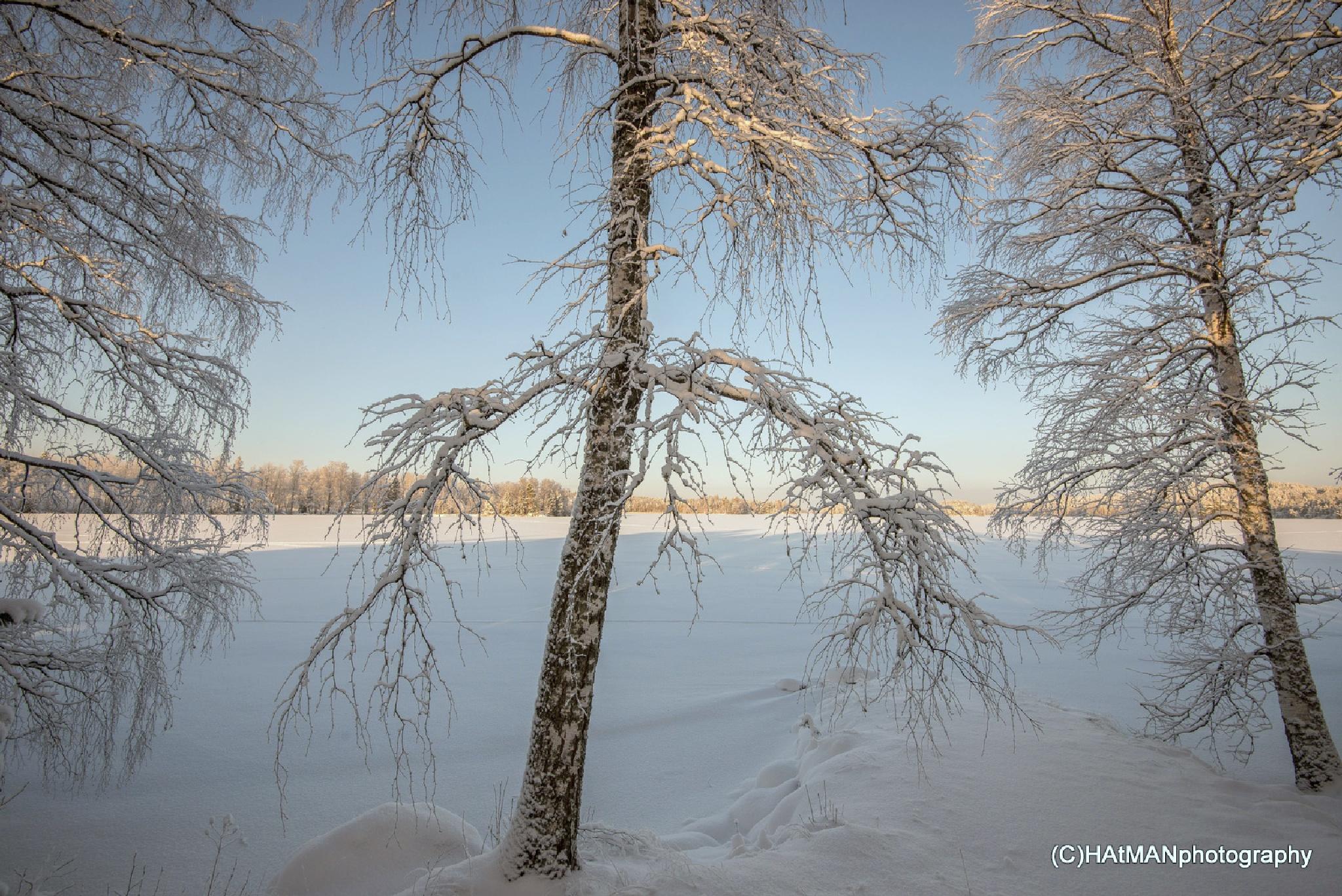 Untitled by HeikkiHAtMAN PHOTOGRAPHY