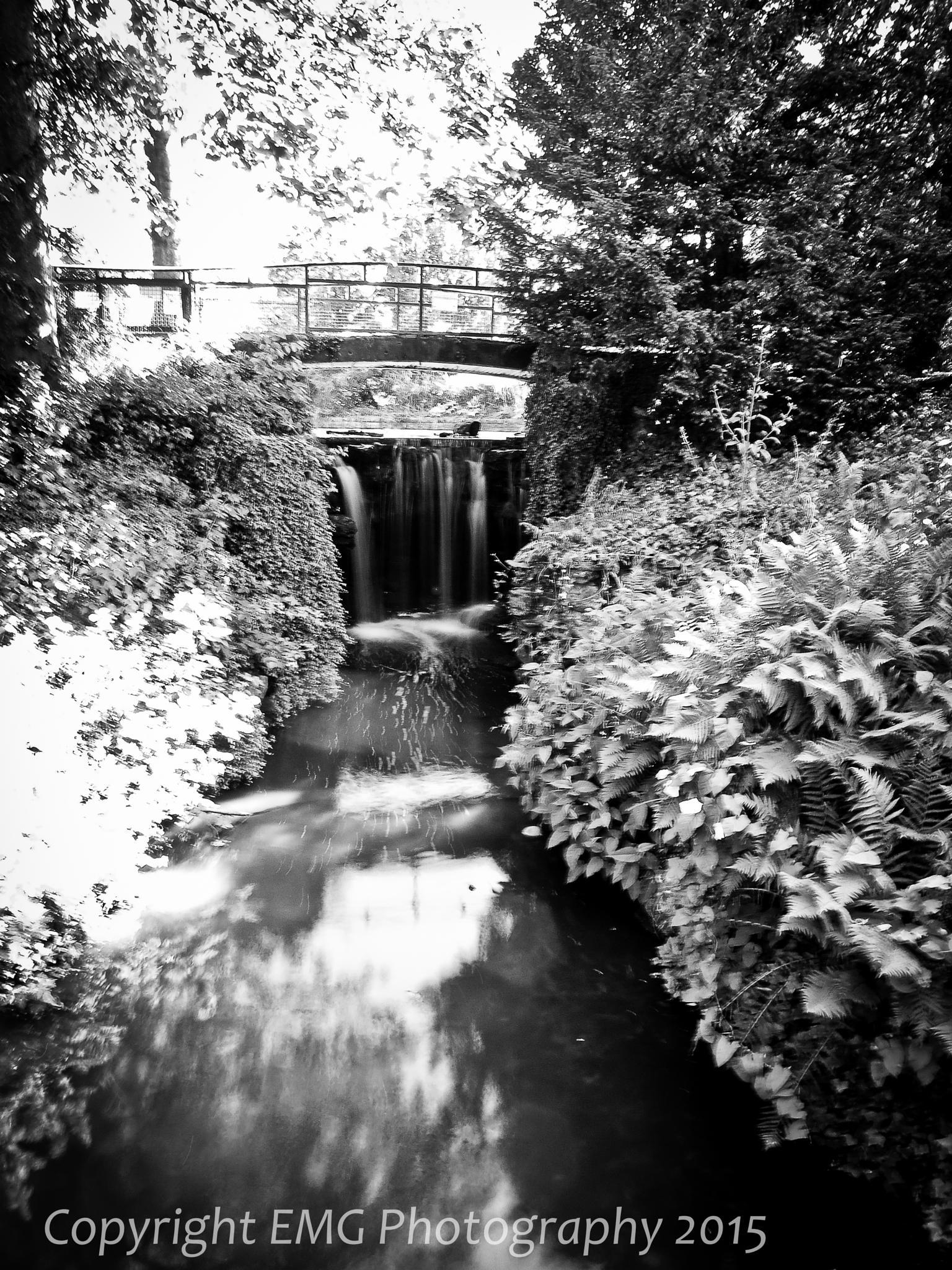 Small Waterfall by elaine_gardener