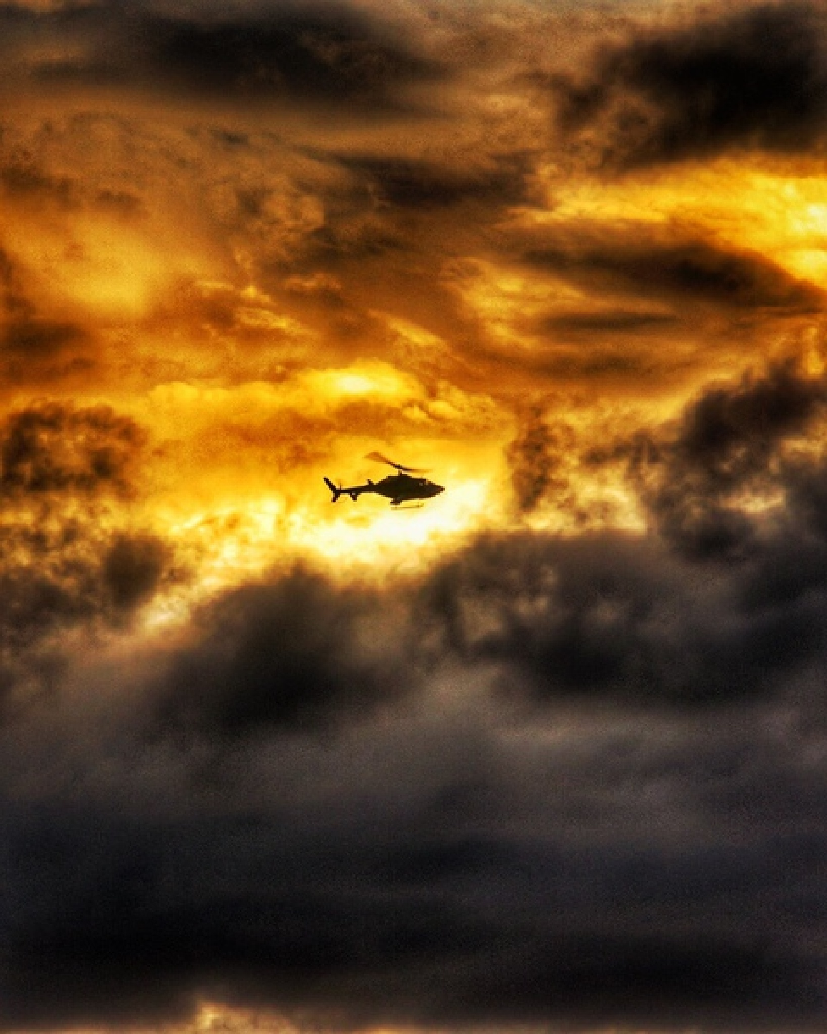 Fire Fly by Serge Kay