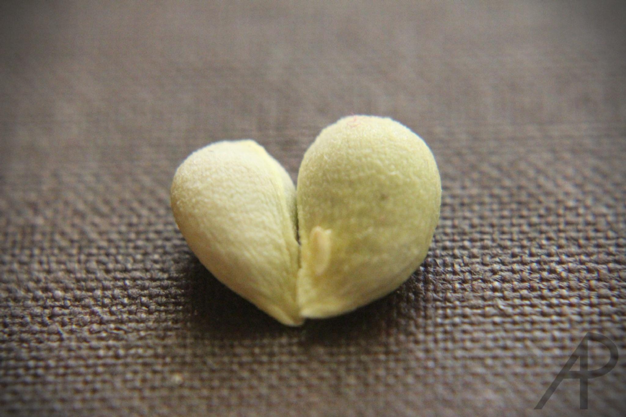 Corazón de limón by Arturo photography
