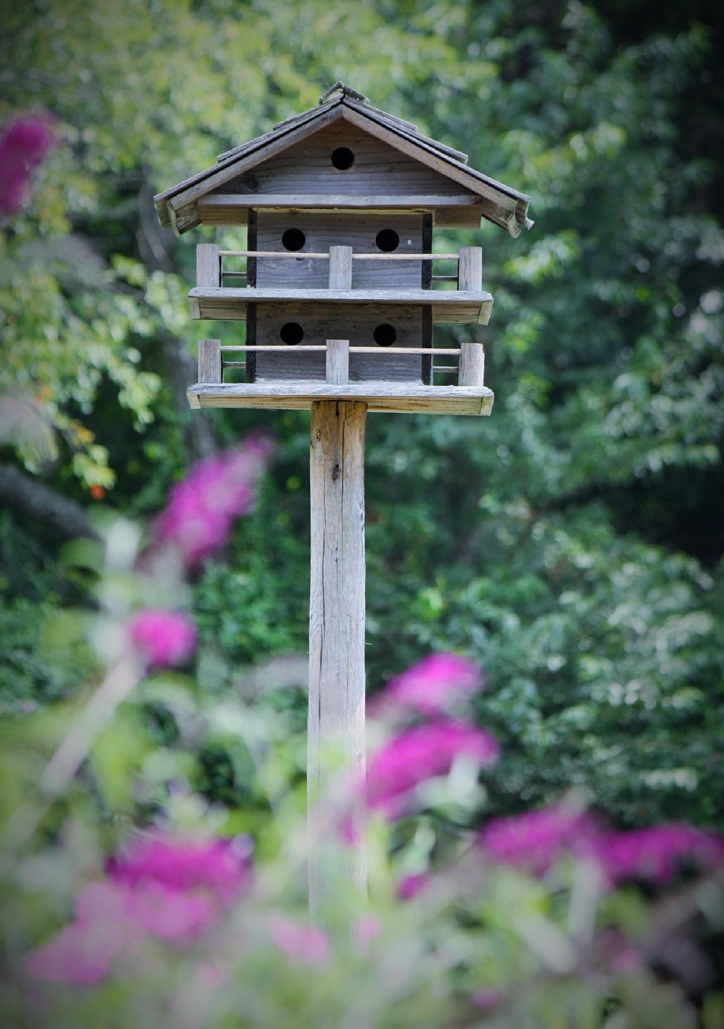 Tri-decked bird house by REH