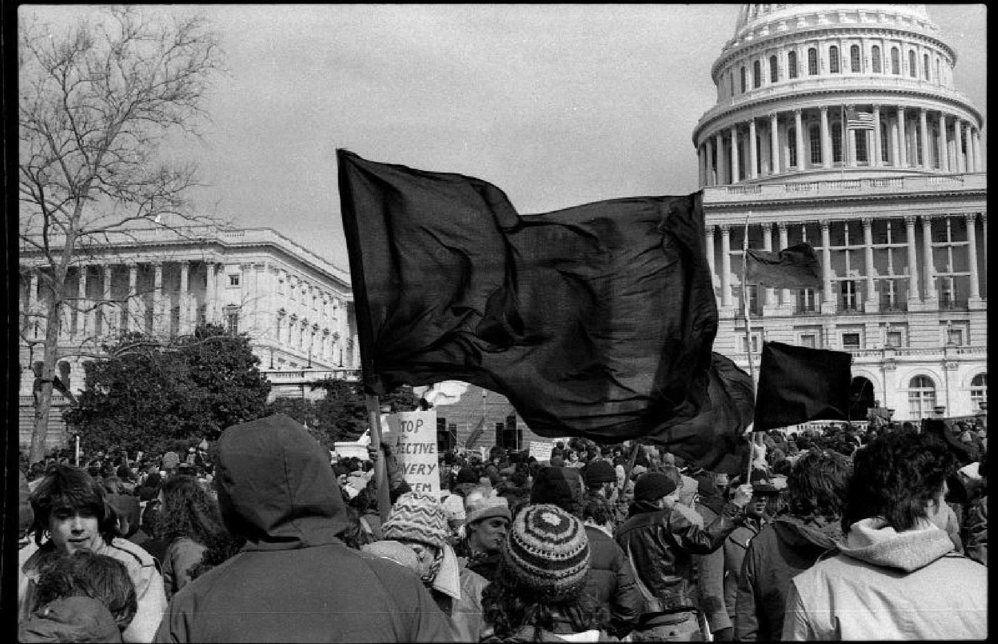 Black Flags by T R Leventhal