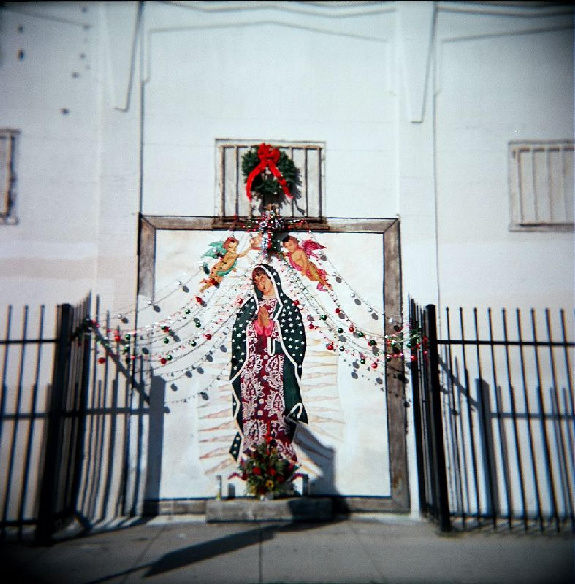 Shrine to the Virgin: East L.A. by T R Leventhal