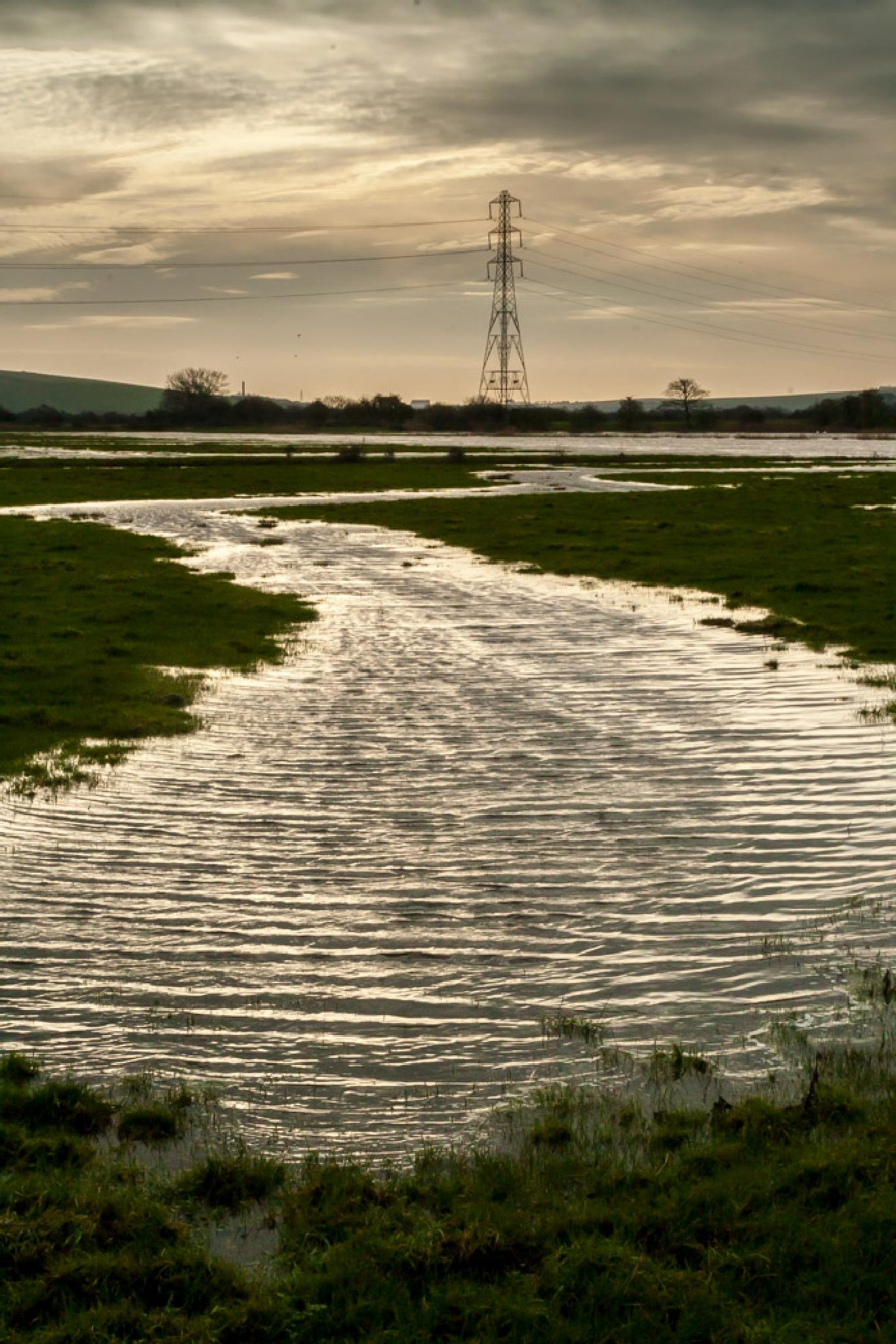Photo in Landscape #field #flood #west sussex #england