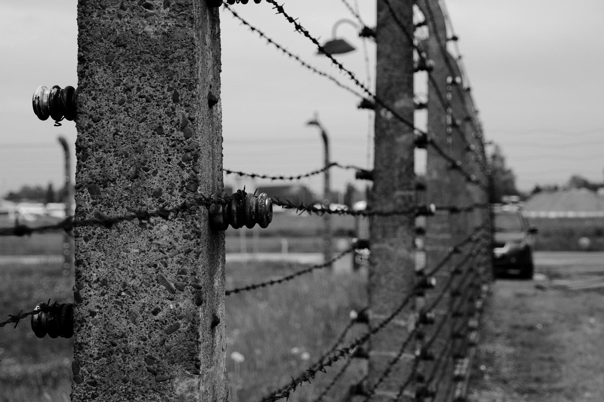 Auschwitz  by JJ Dunne