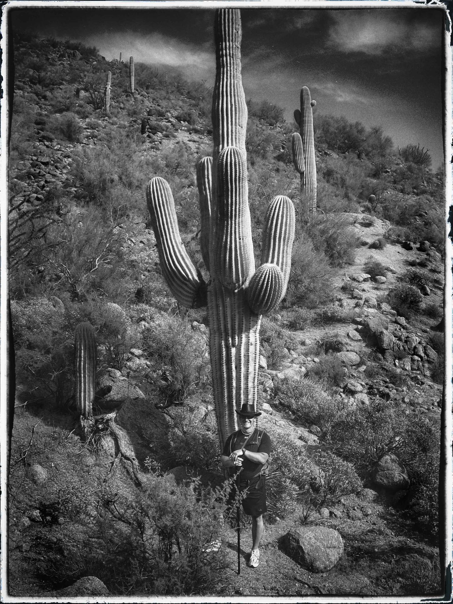 Mesa Hiking by skchristensen6982