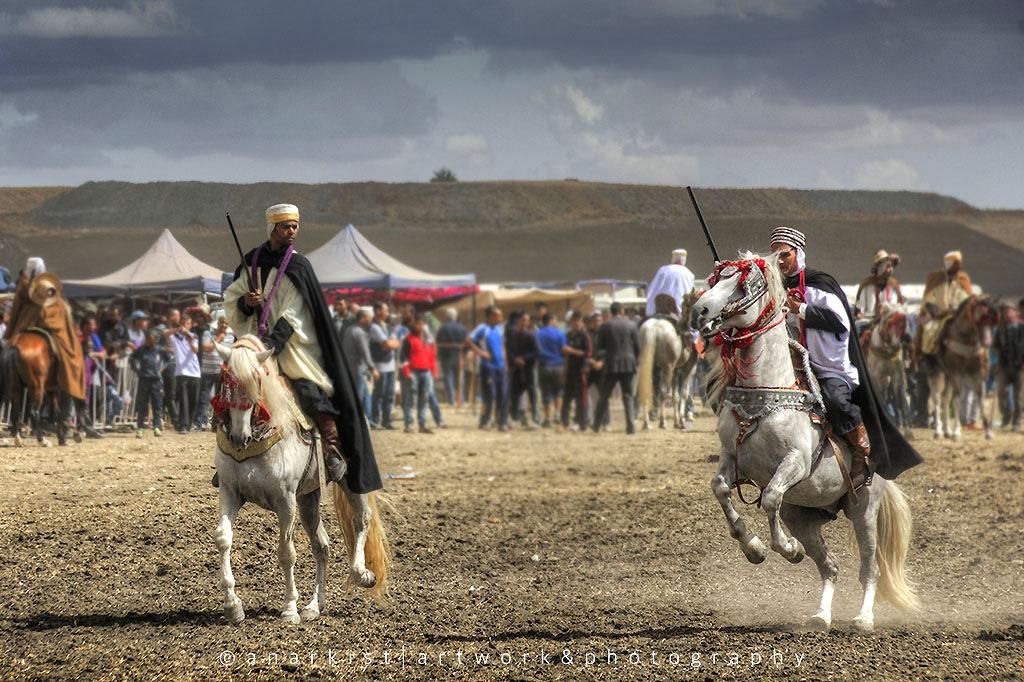 Algerian knights by Abdellatif BOUAB