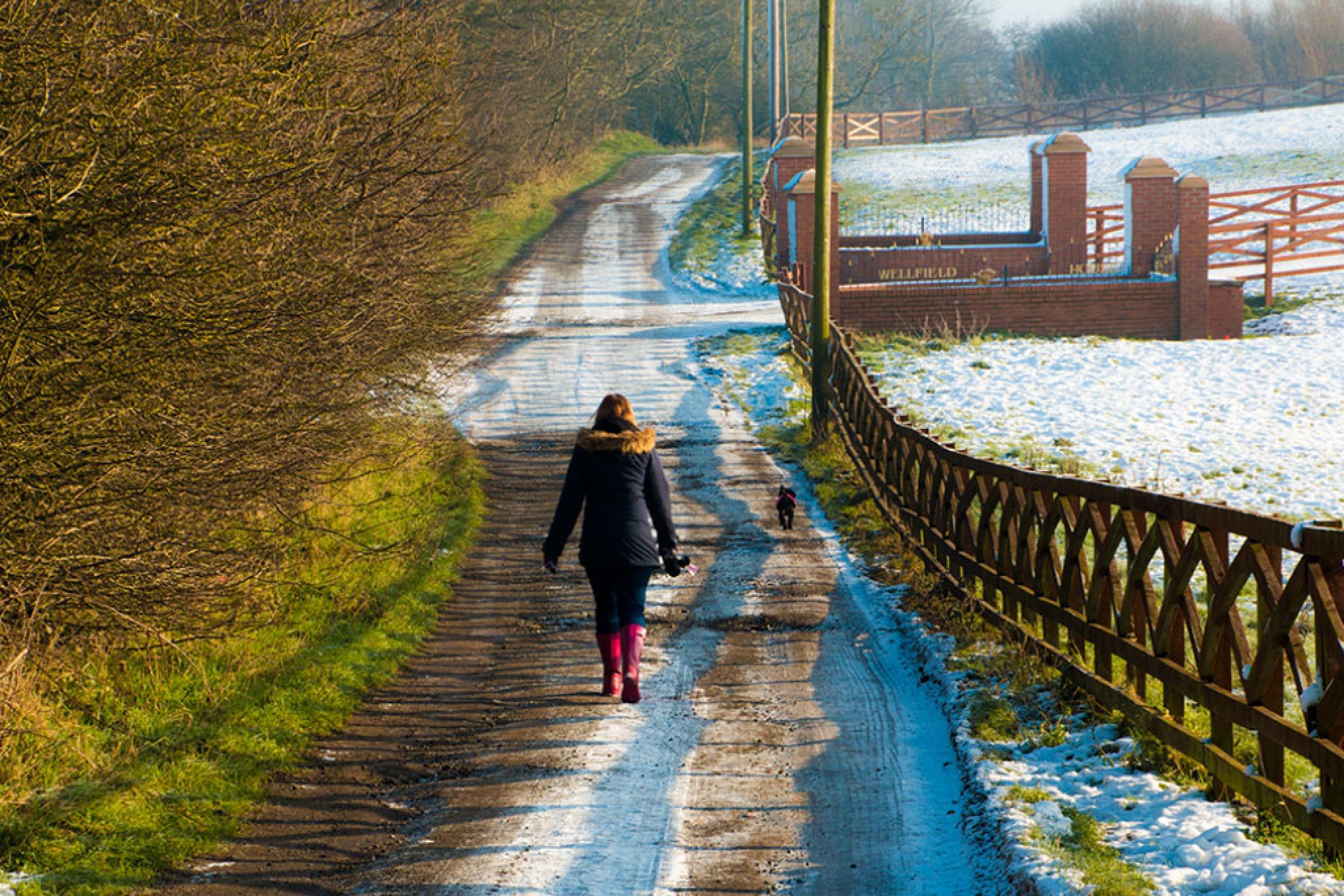 Walk to lake by jamesdawsonstraughan