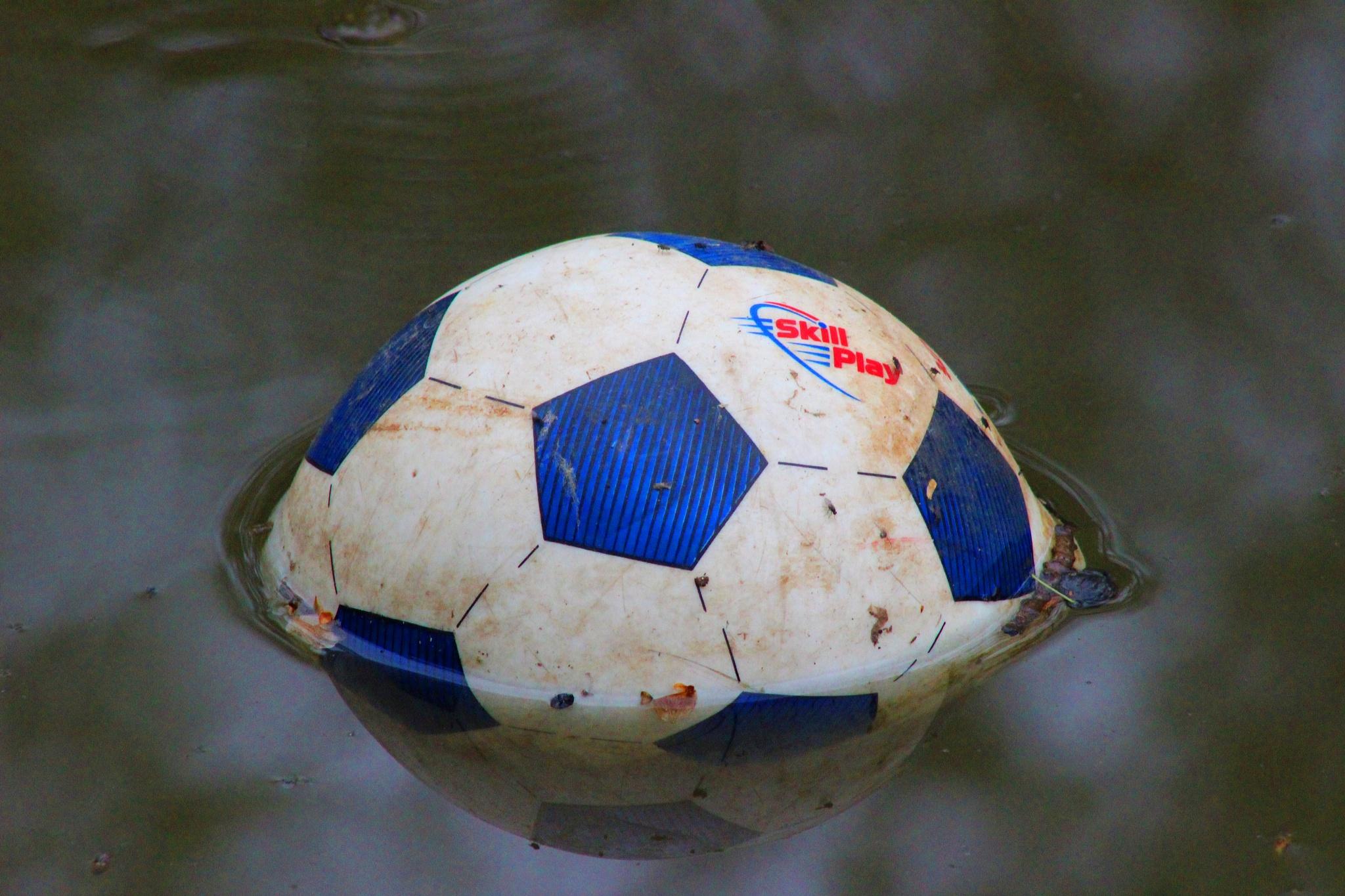 Photo in Random #canal #600d #canon #debris #rubbish
