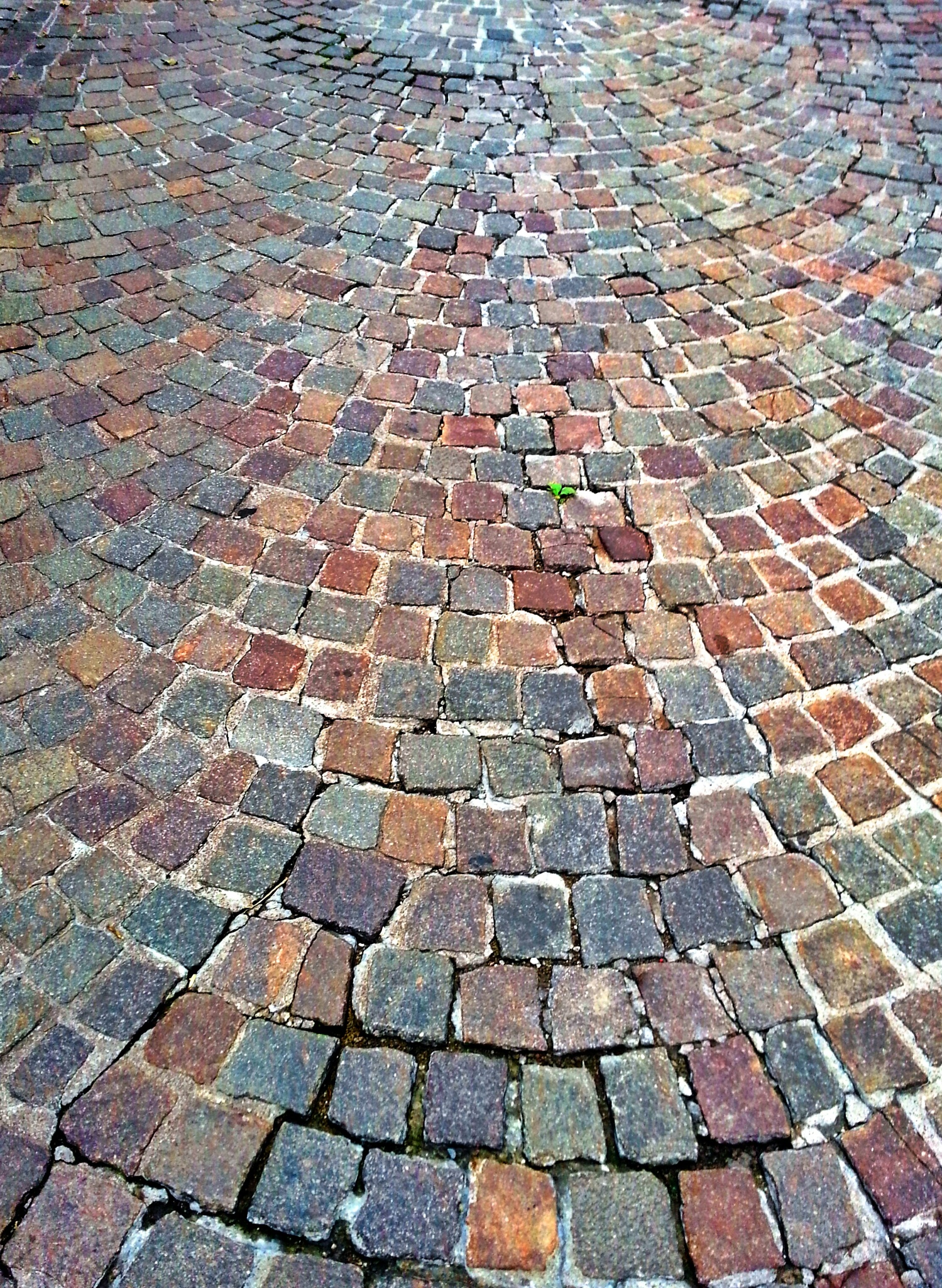 stones by Markus Springer