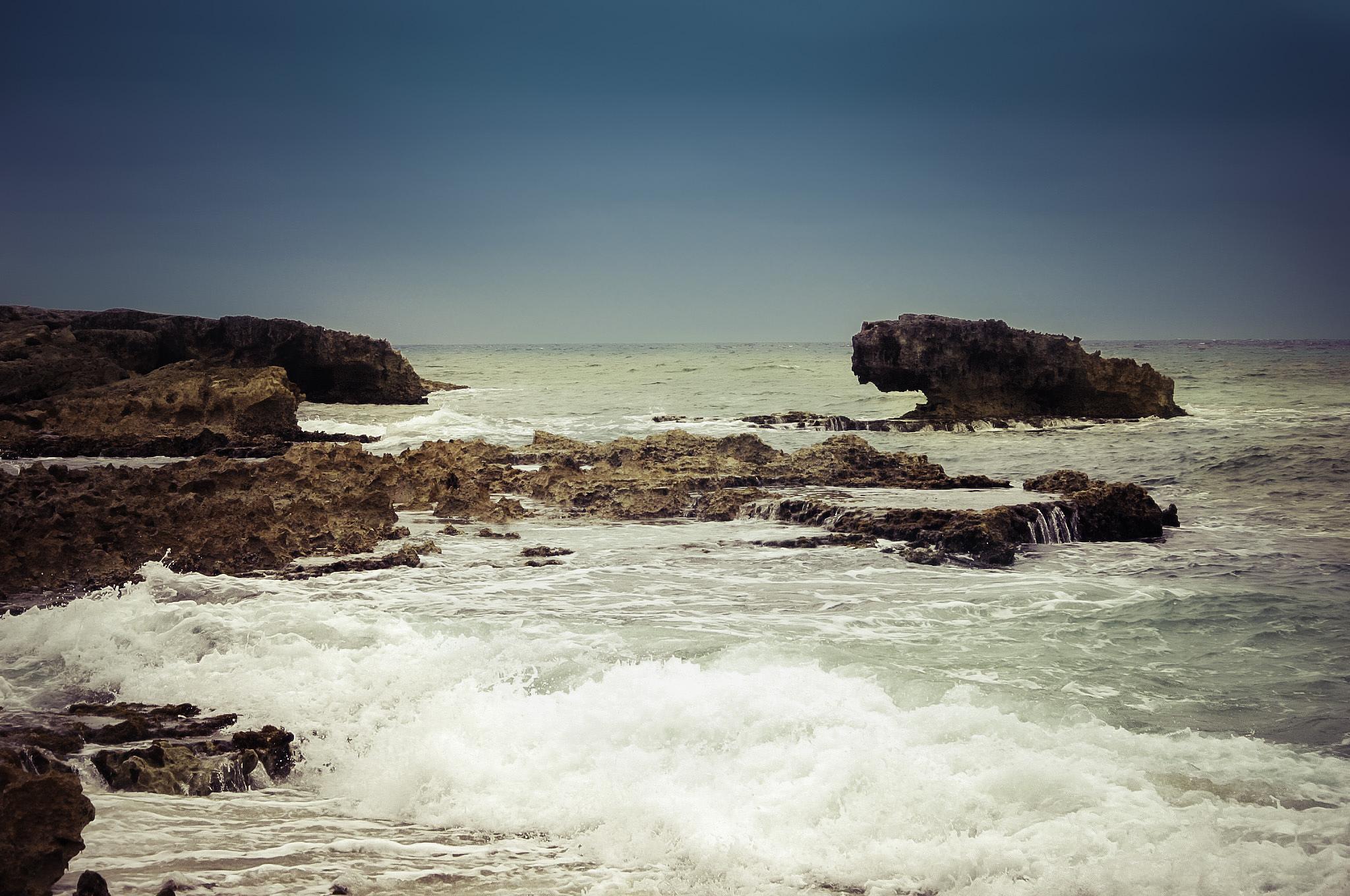 Caribbean Sea by Stacy Devereaux