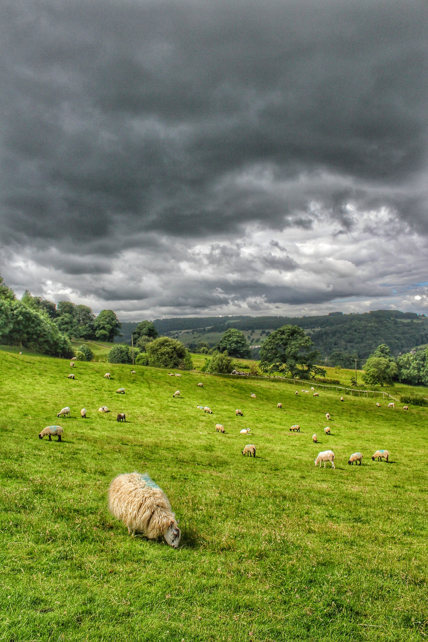 Cotswolds  by David65