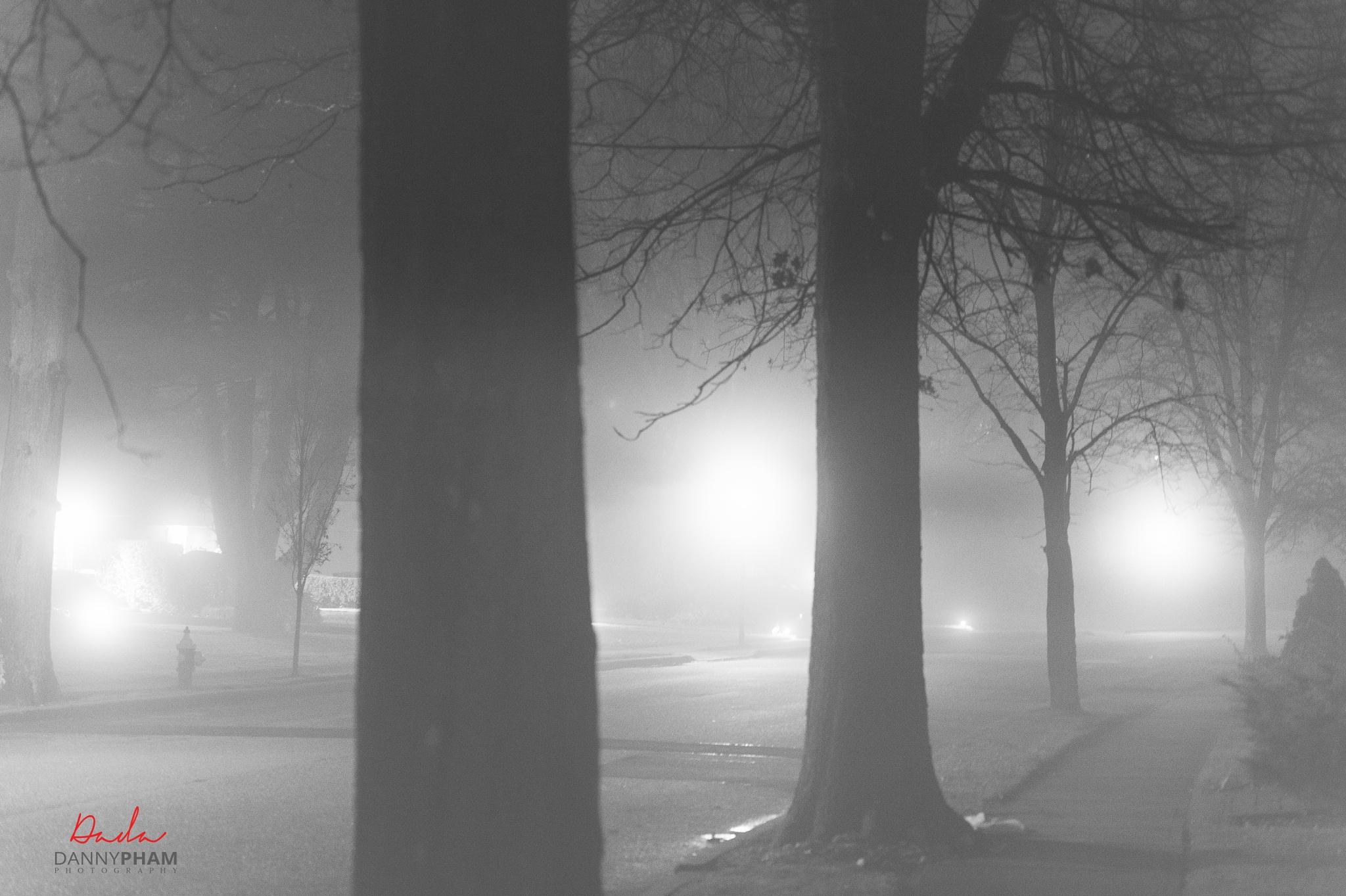 Foggy cold night by Danny Pham