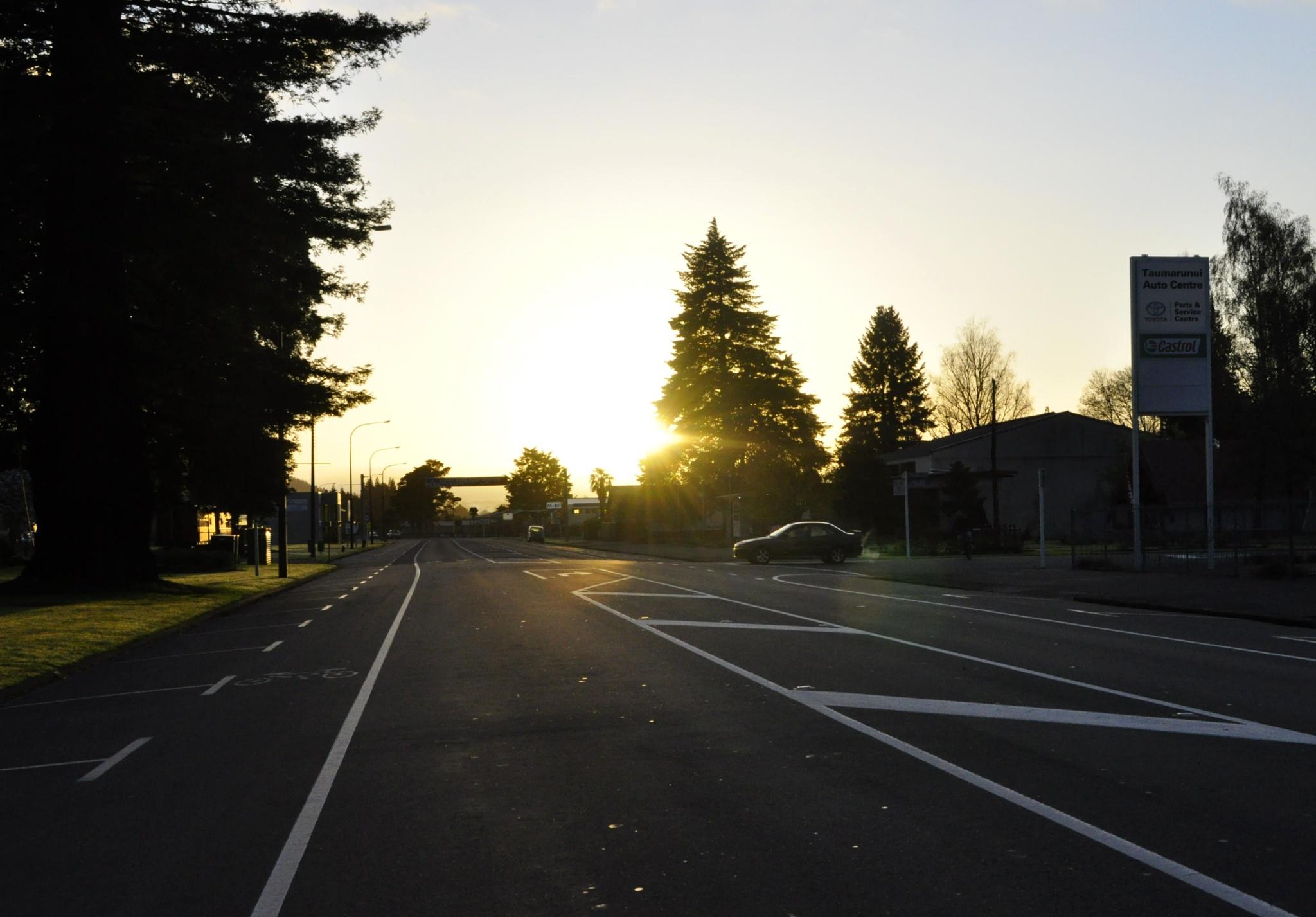 Morning rush hour!  by Ellen Lauder