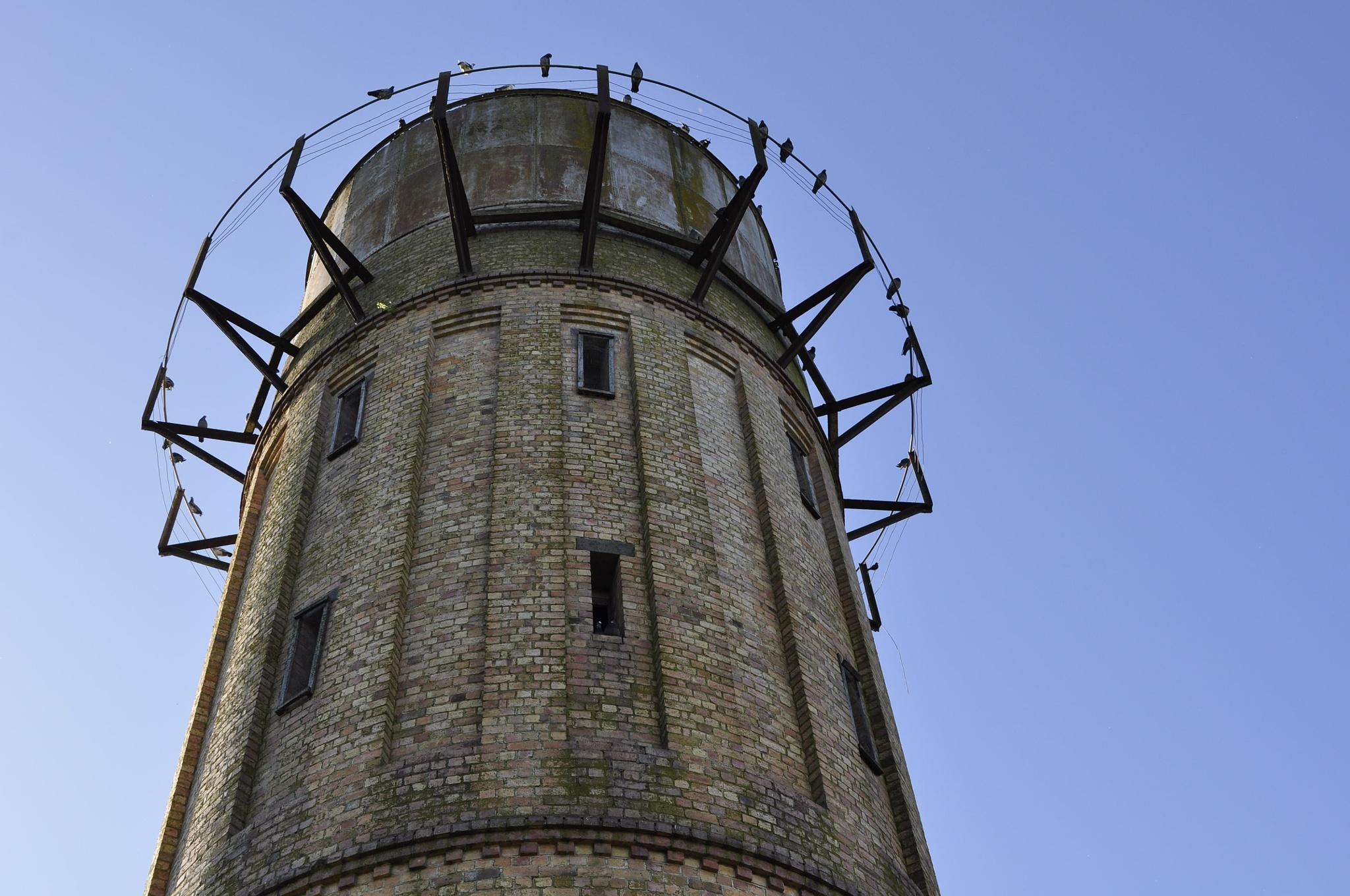 The Tower by Ellen Lauder