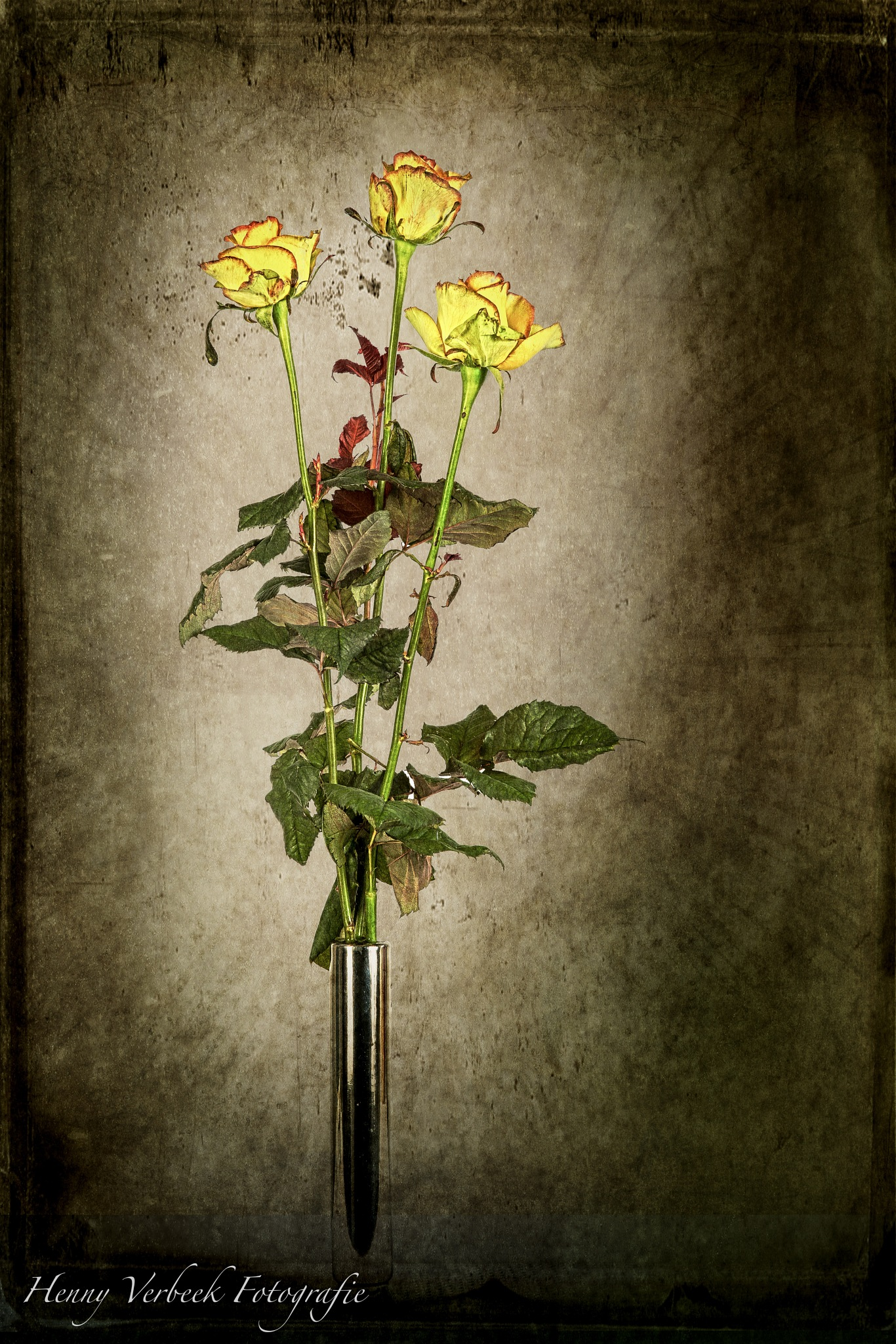 Yellow Roses by henny verbeek