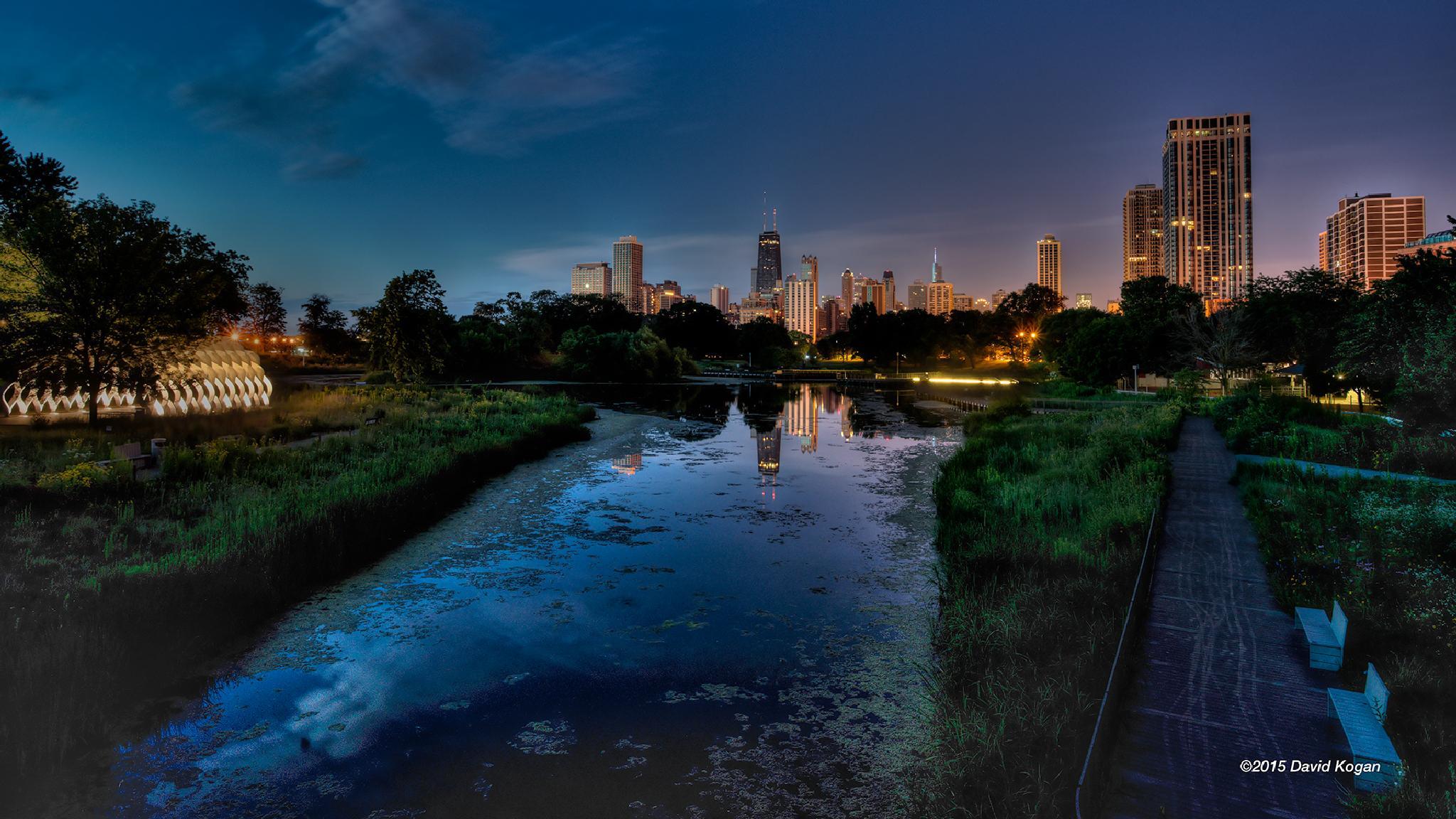 Lincoln Park Lagoon by David Kogan