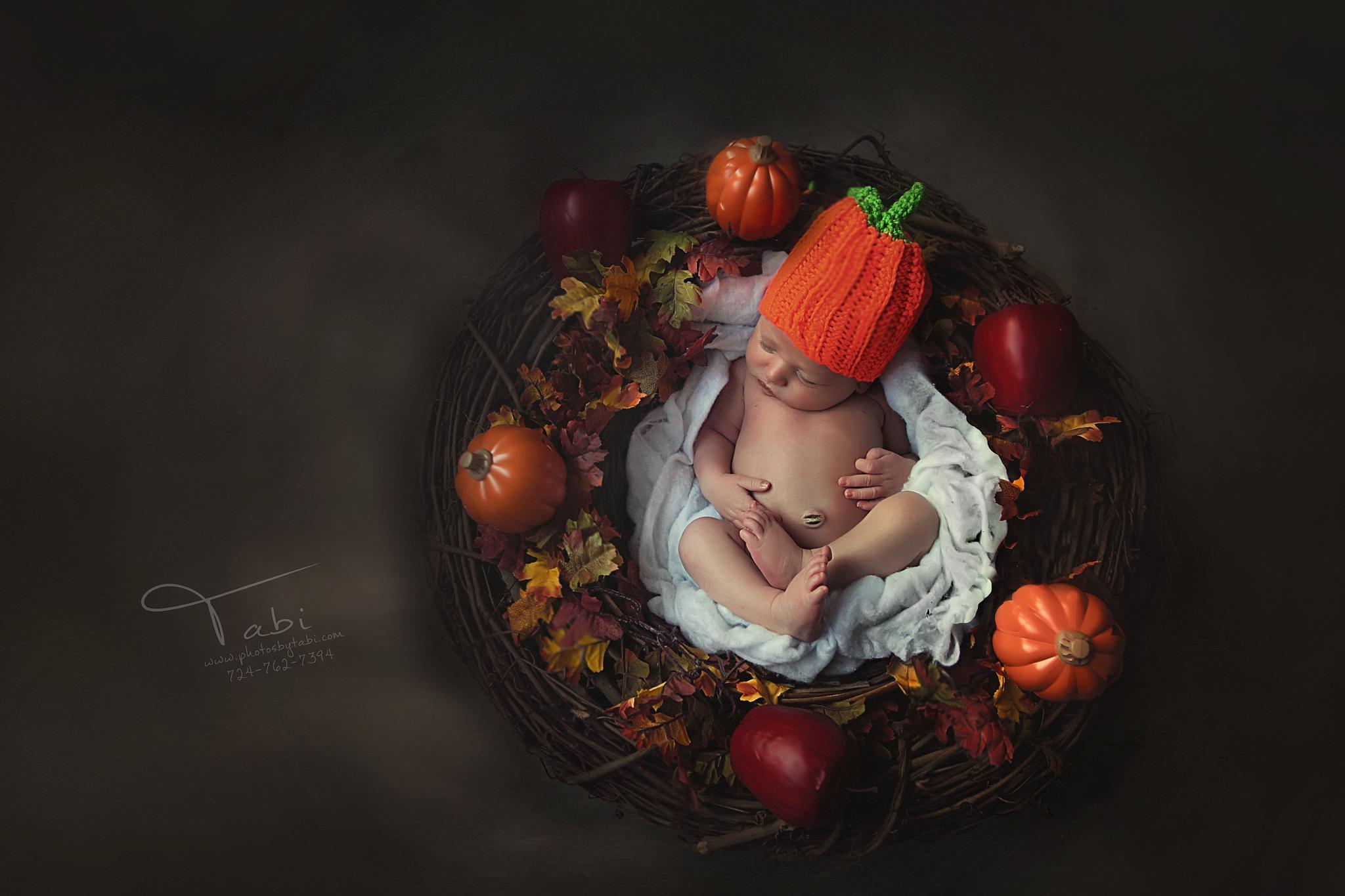 little pumpkin by Tabitha Bowman