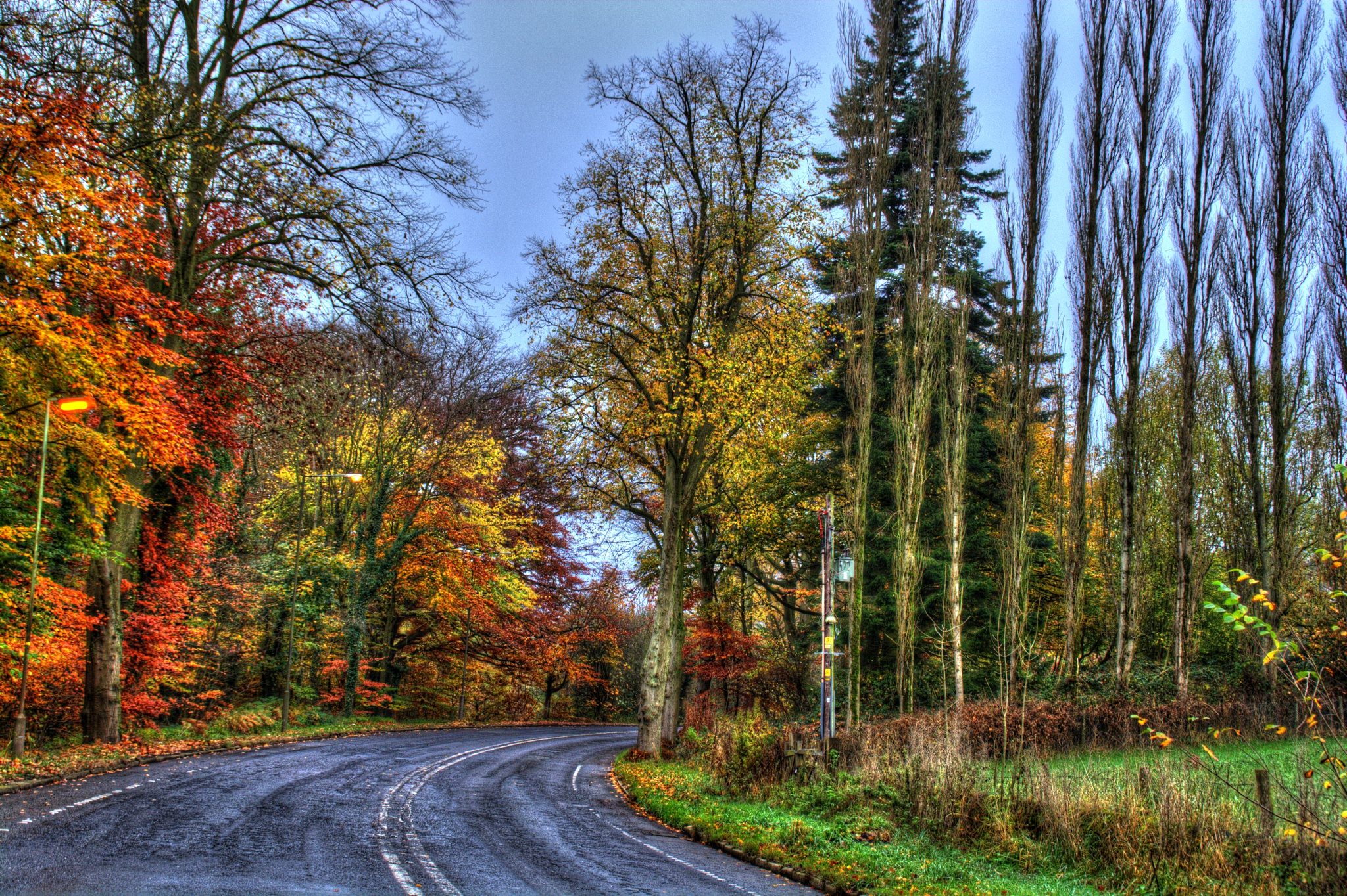 colourful country lane rivelin valley by Stuart Robertshaw Photography