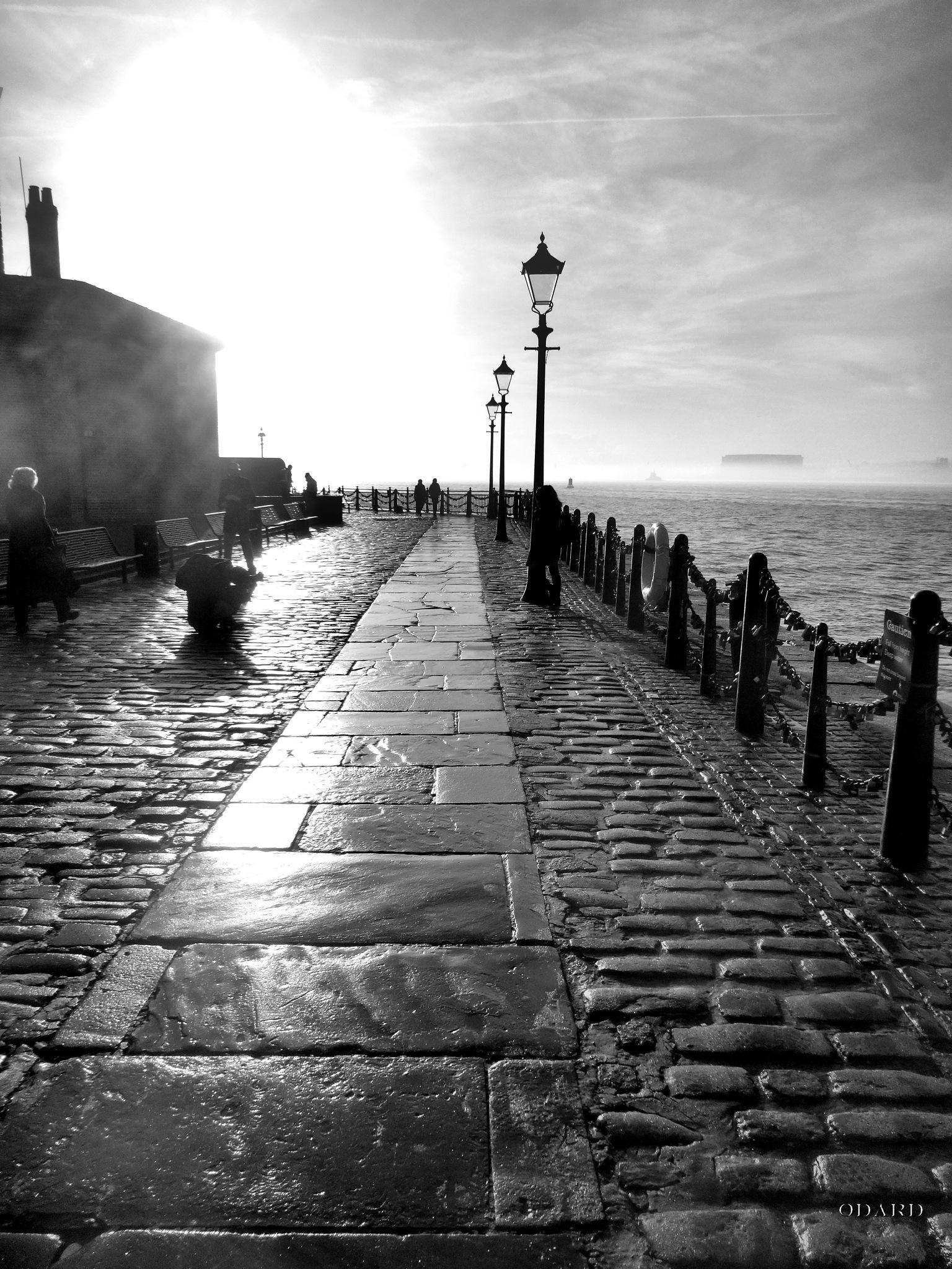 Winter promenade by Odard
