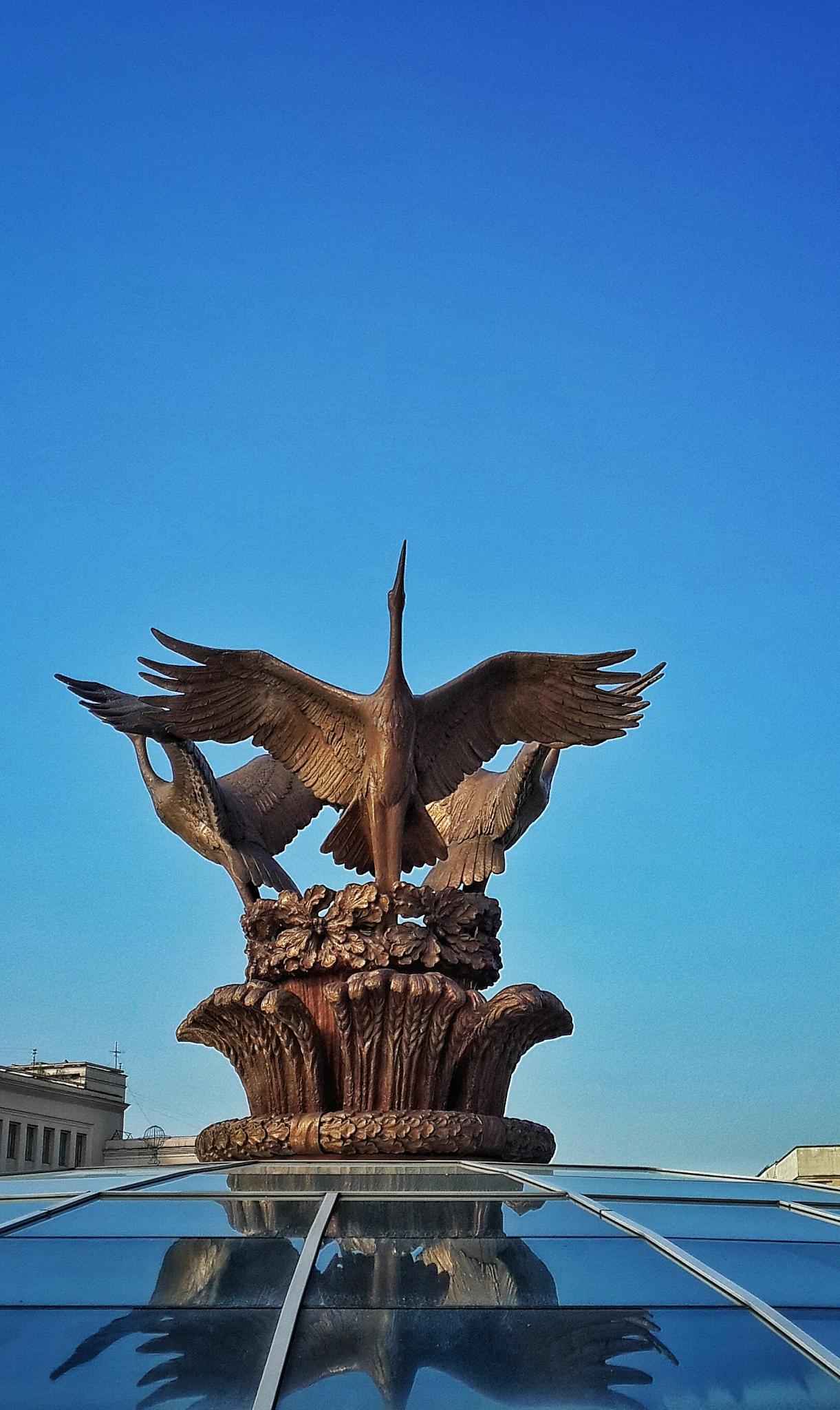 cranes by kozakovs