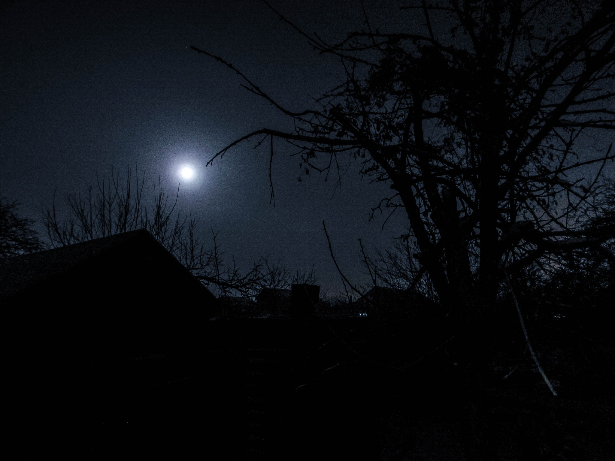 Moon by viaruss