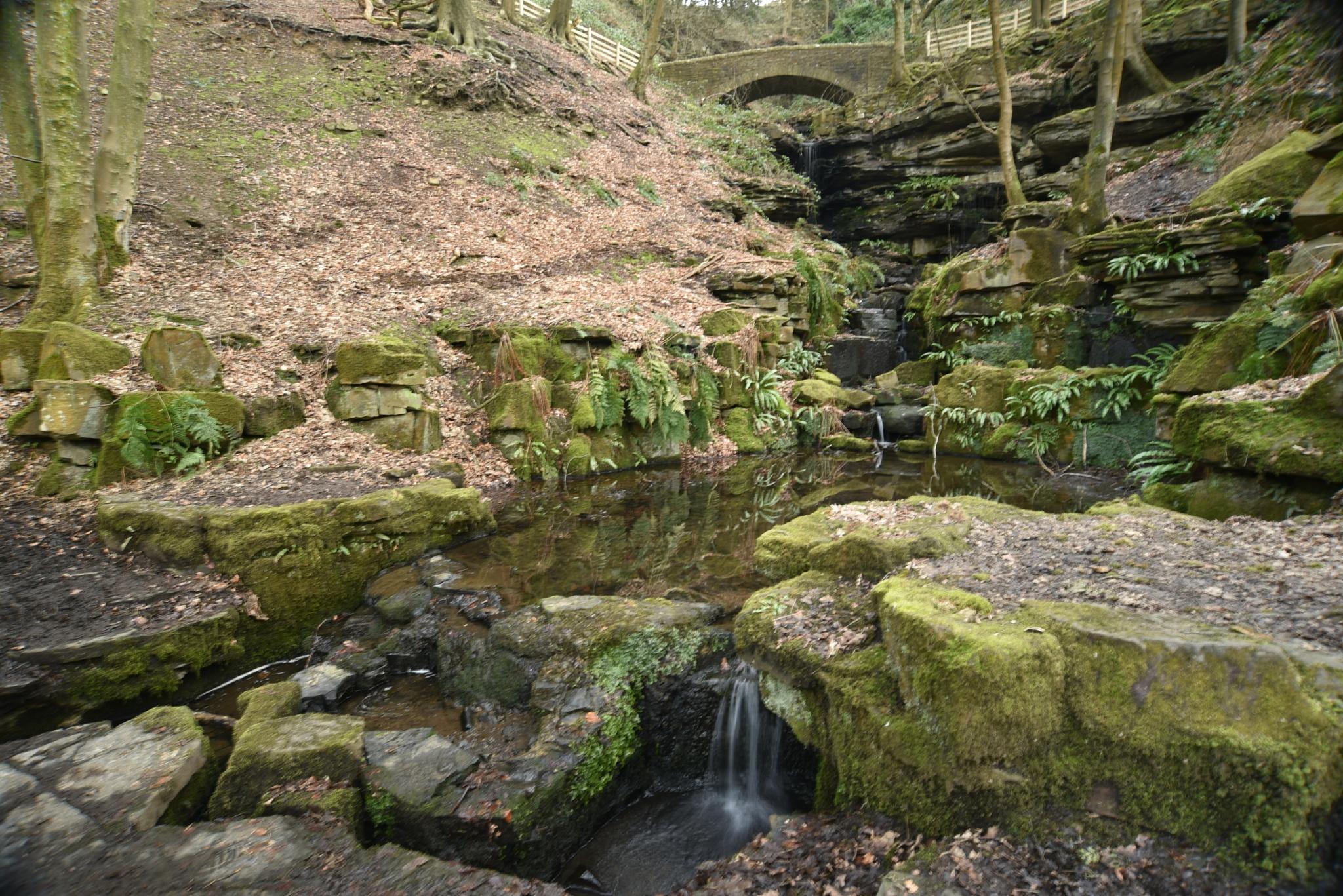 The  old      water feature  !  by juliehatt123