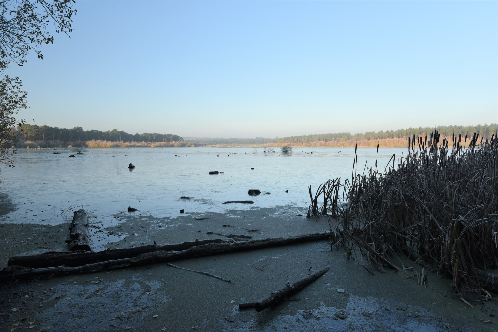 On  frozen  pond  ! by juliehatt123