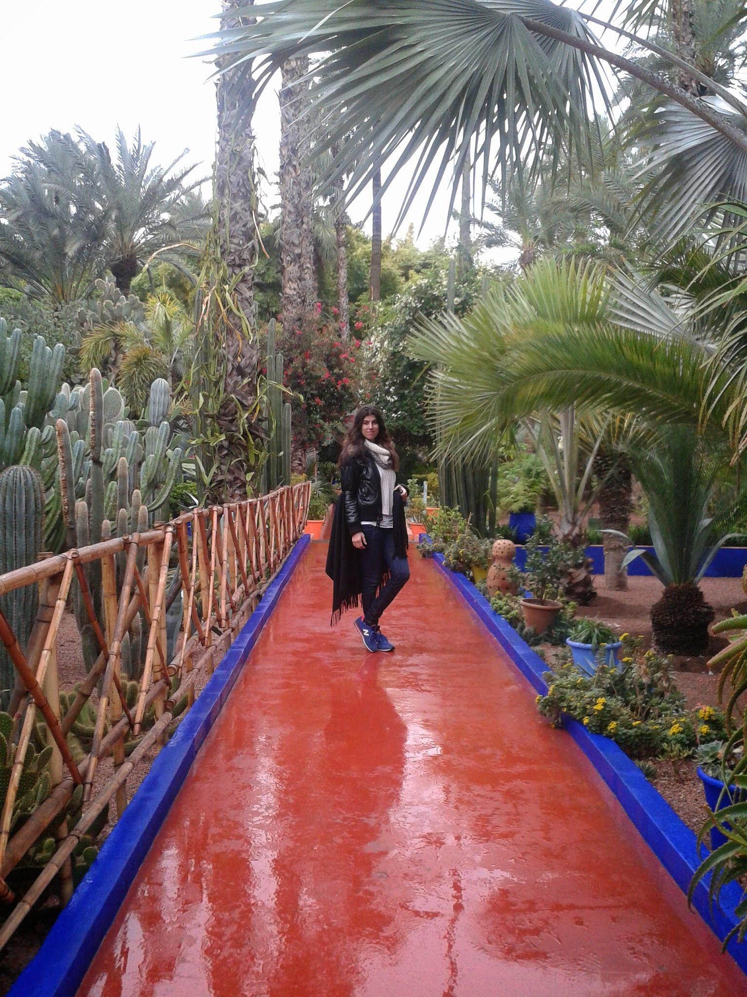 Jardin Majorelle by Meriç Aksu