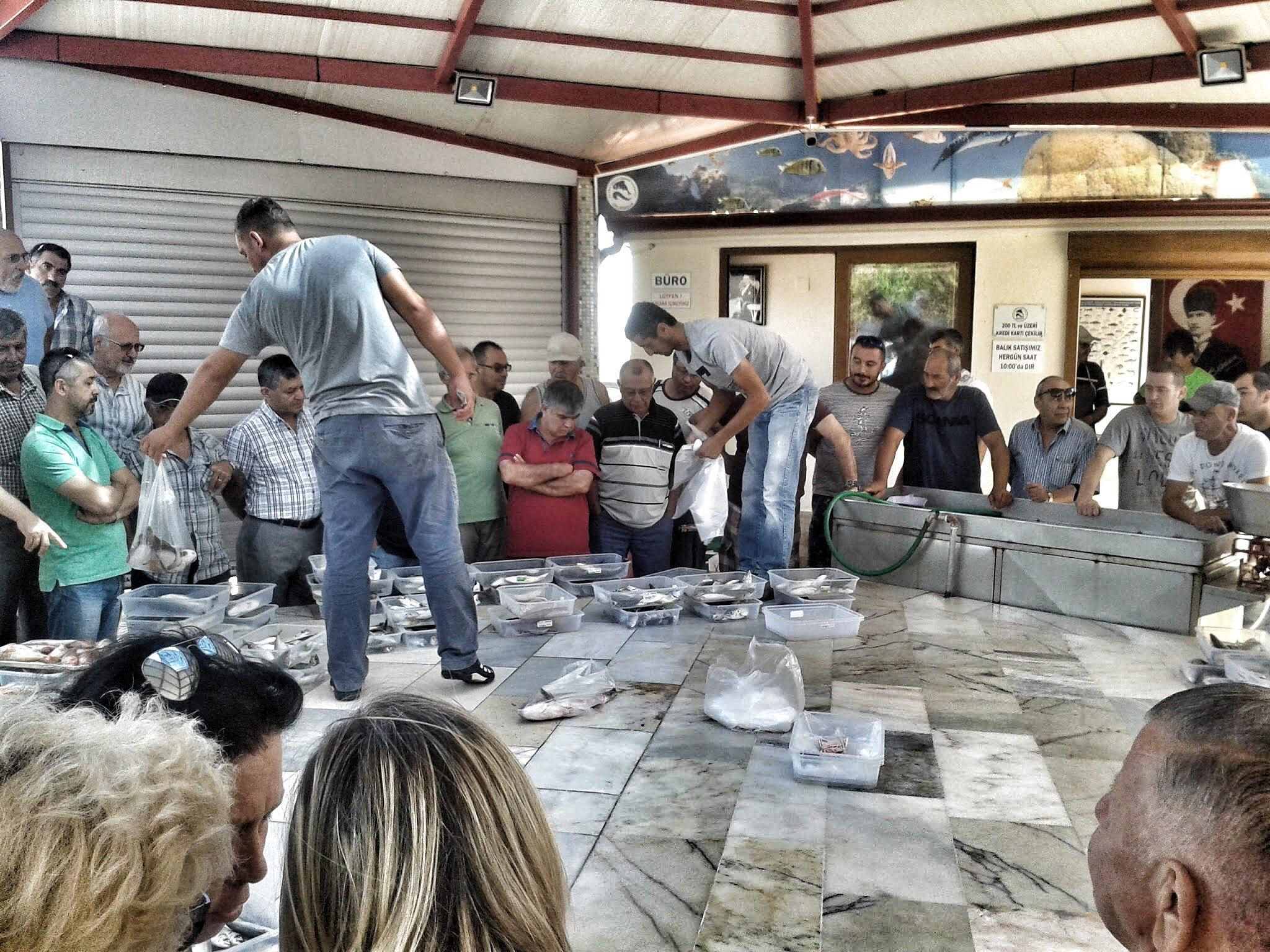 Fish market in Urla by Meriç Aksu