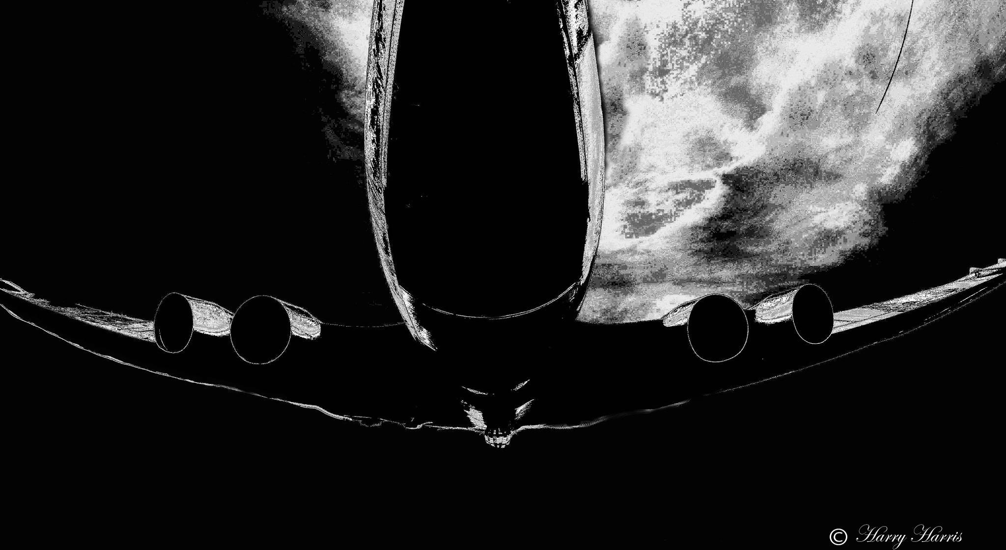 Moonlight Sortie. by Harry Harris.