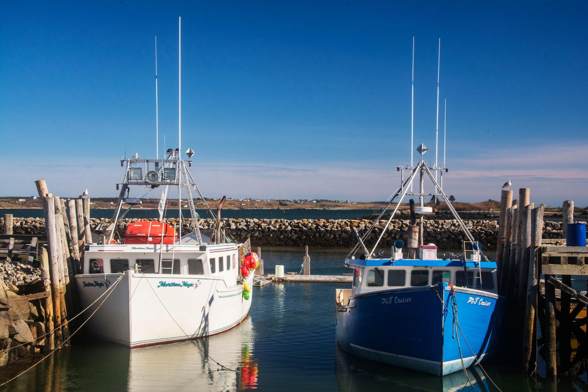 Lobster Fishing Boats by Wayne L. Talbot