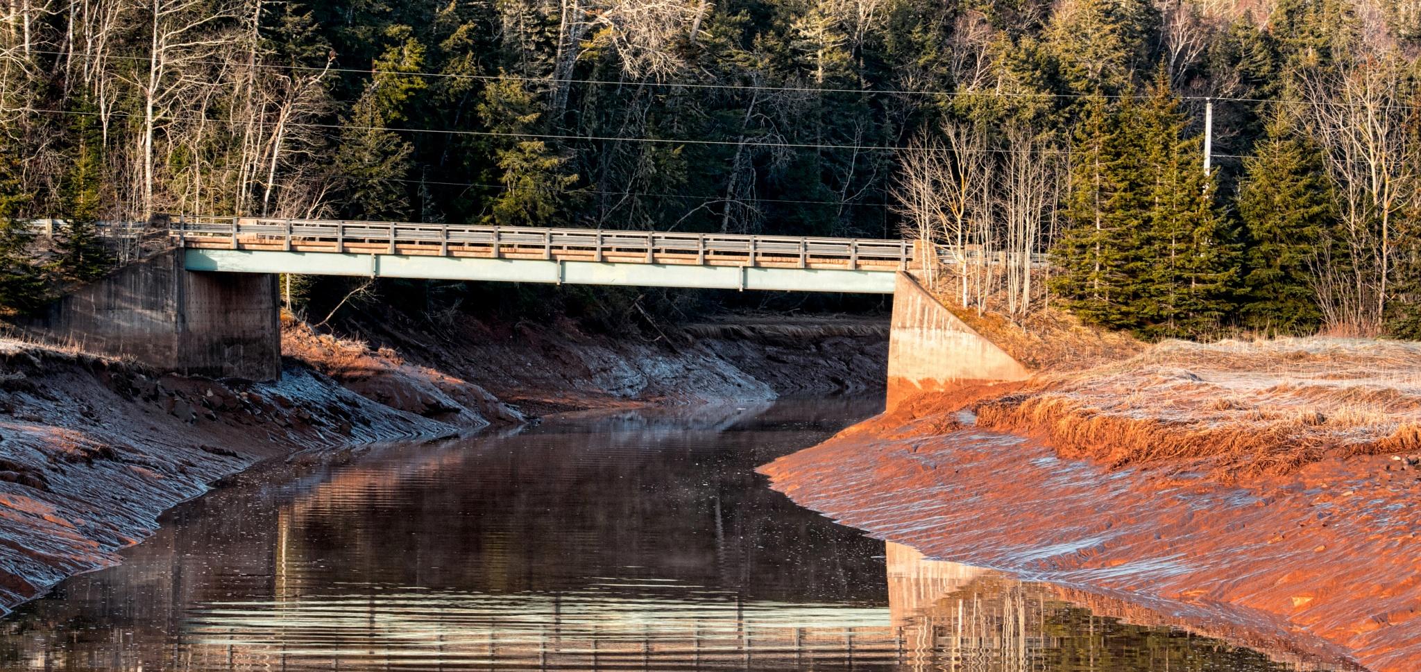 Muddy Water by Wayne L. Talbot