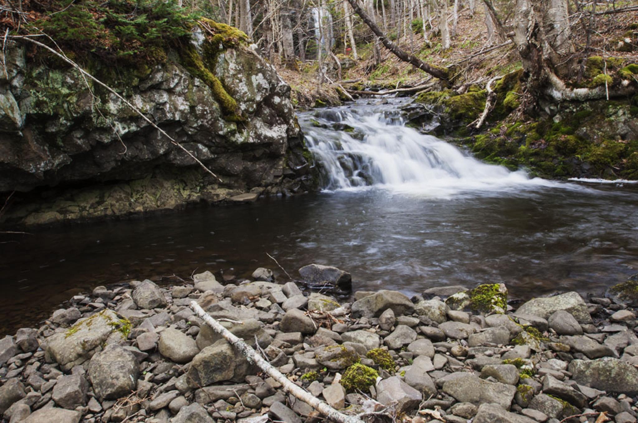 Tiny Water Falls by Wayne L. Talbot