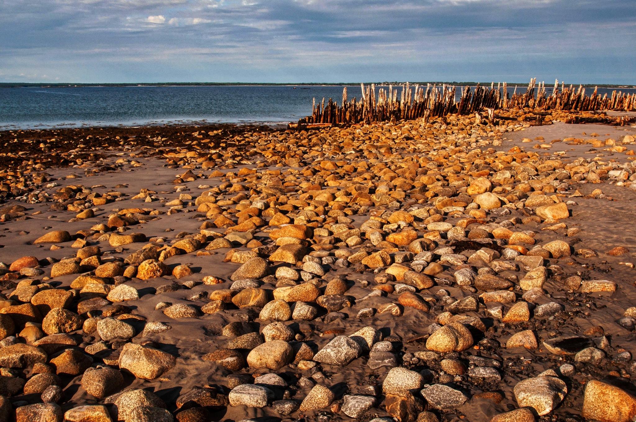 A Rocky Coast by Wayne L. Talbot