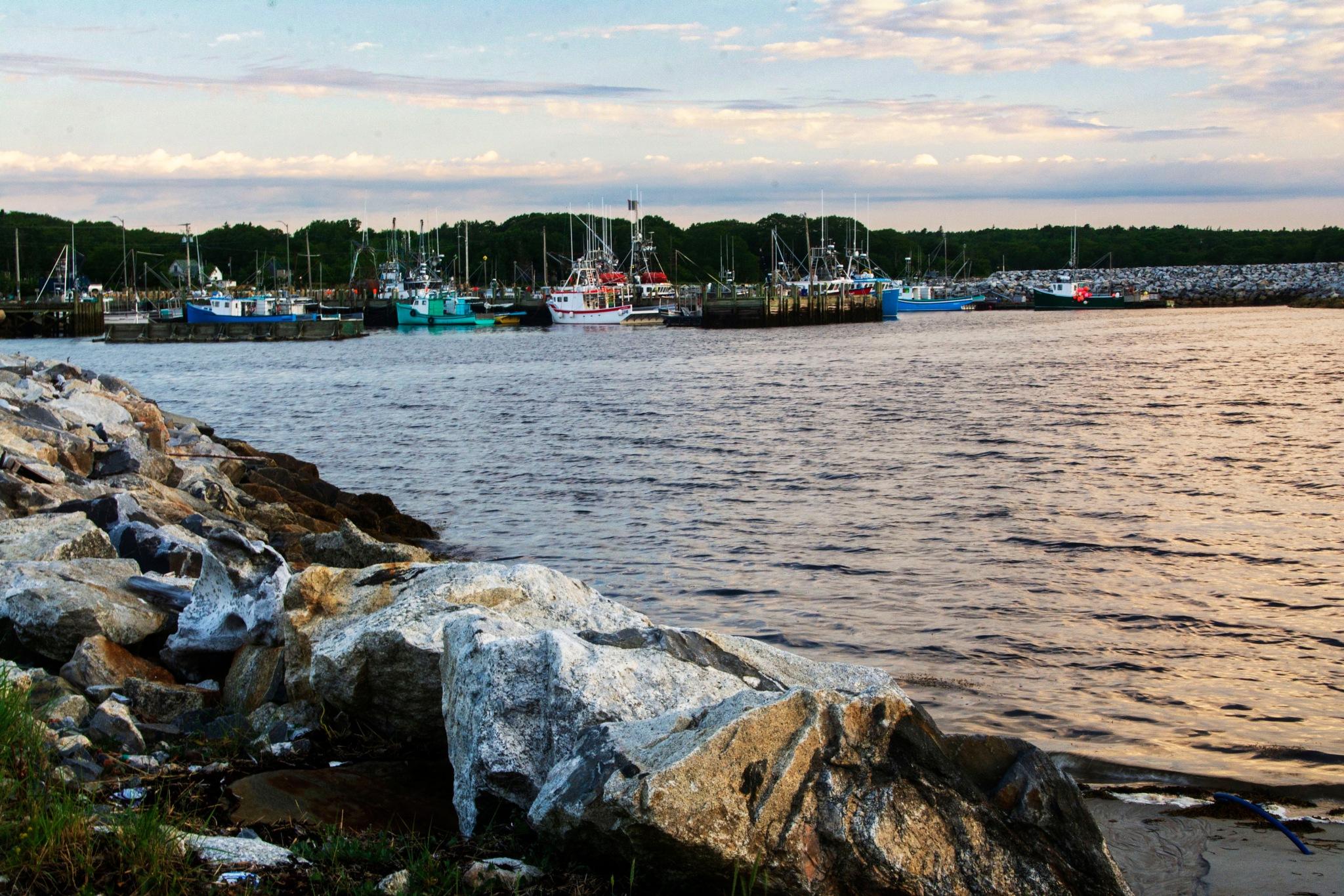 Lobster Boats at Dawn by Wayne L. Talbot