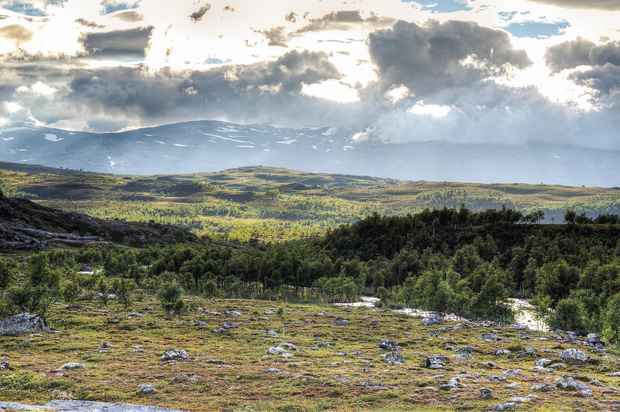 Down the downy birch valley 1/2 by Malcolm Karlsson